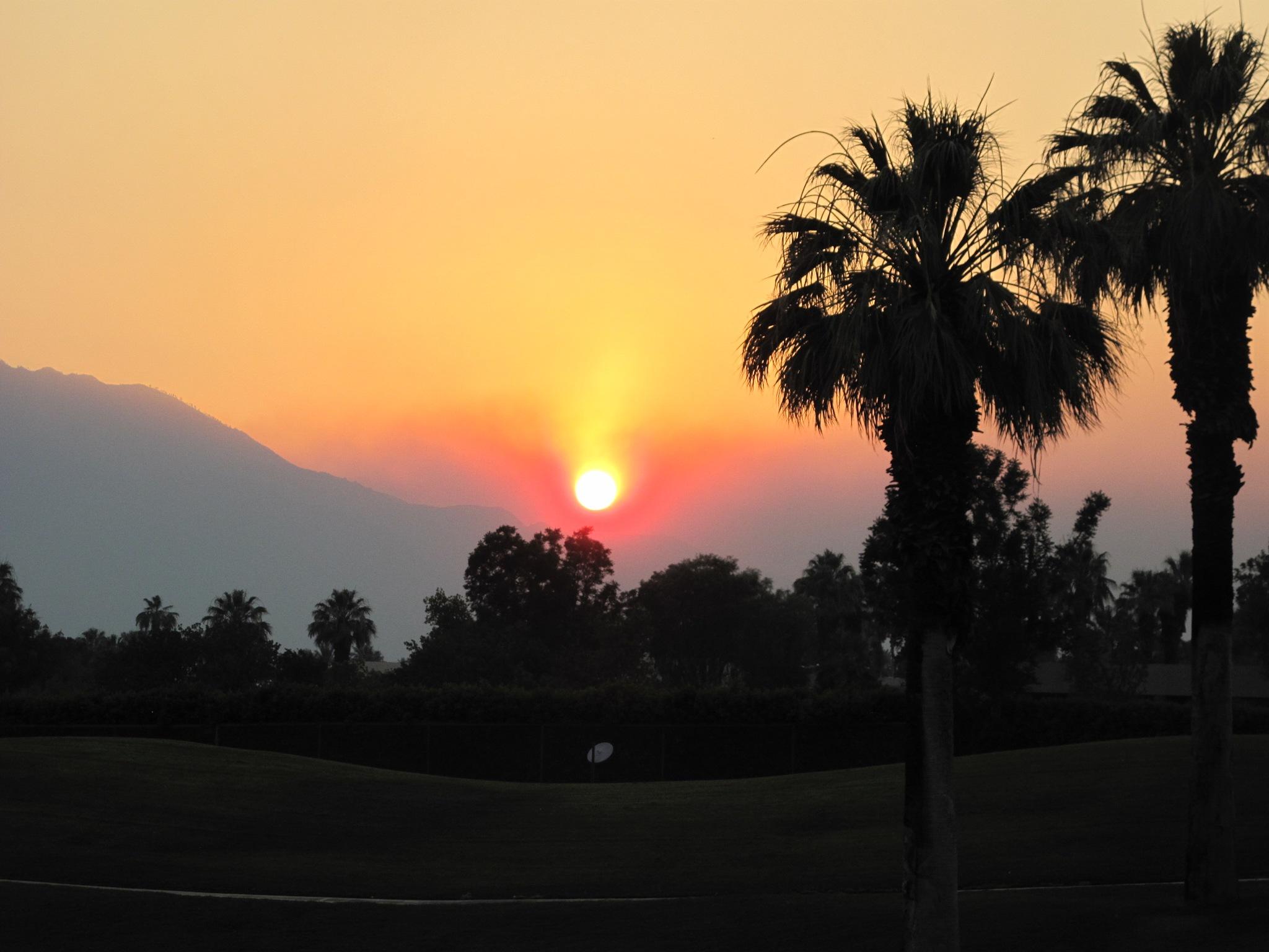 Palm Desert CA. by T.Neil Walker