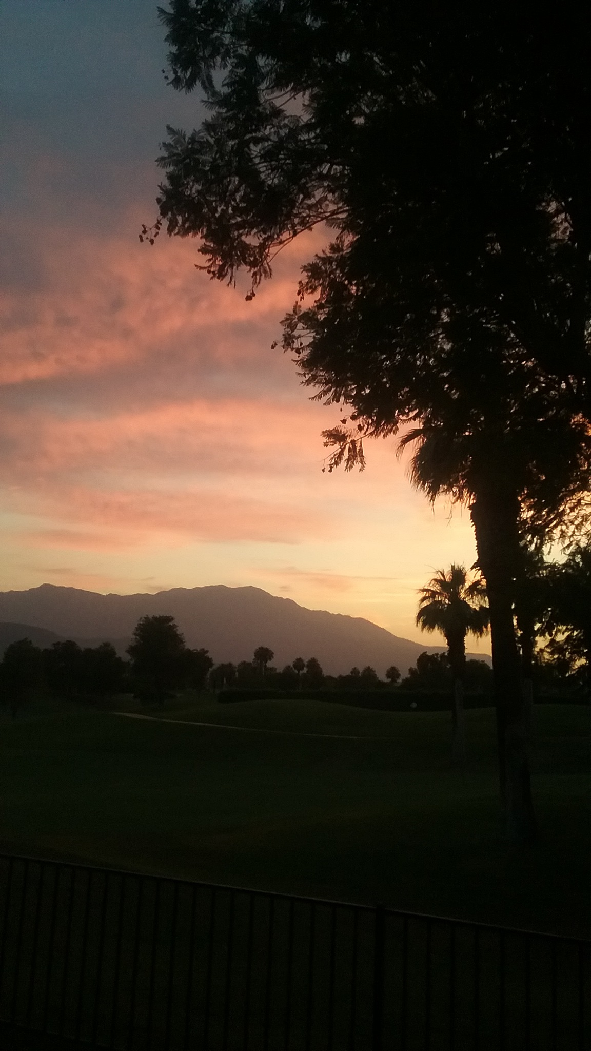 Fire Enhanced Desert Sunset  by T.Neil Walker
