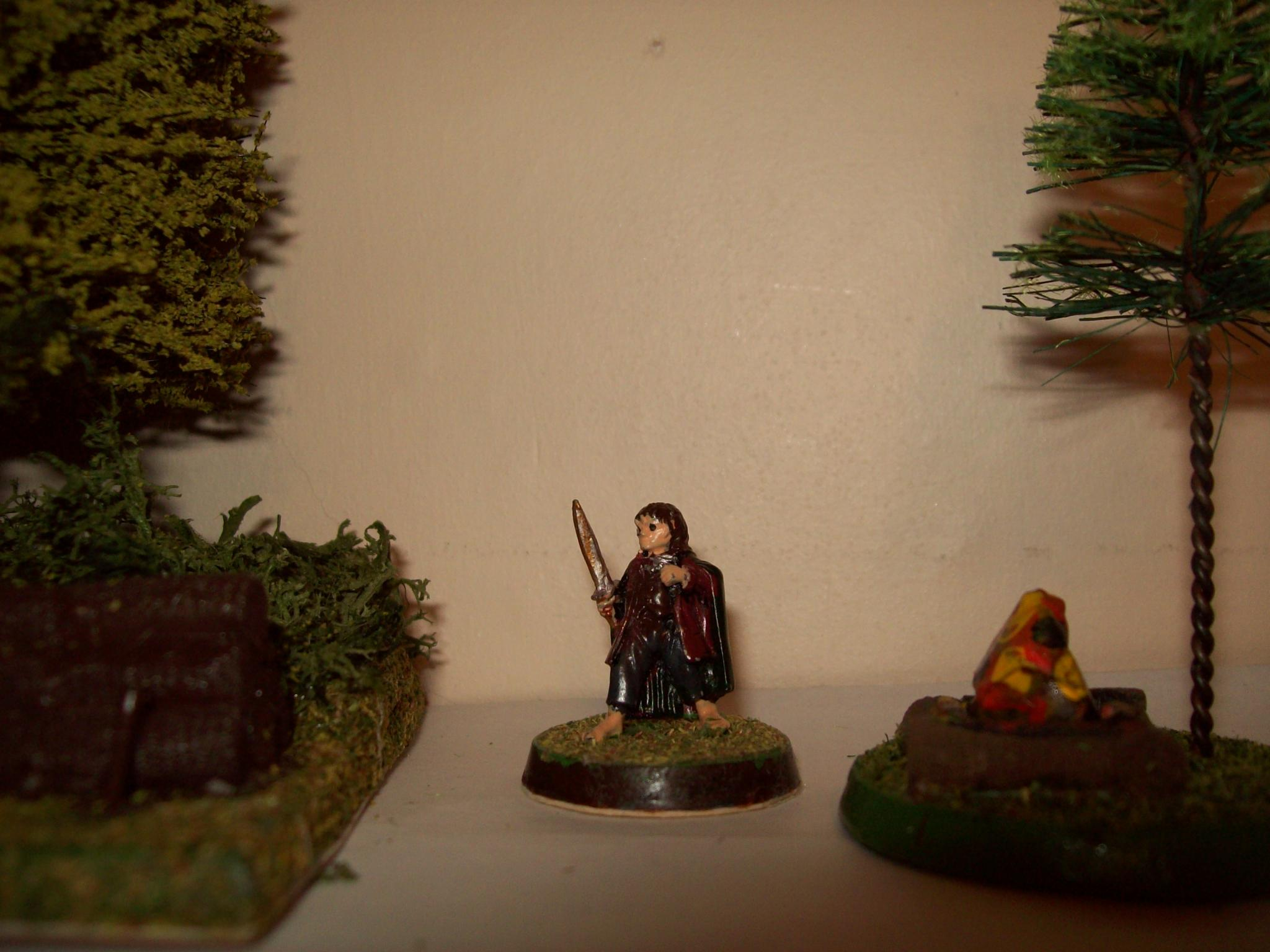 Frodo 1 by Paul Richardson