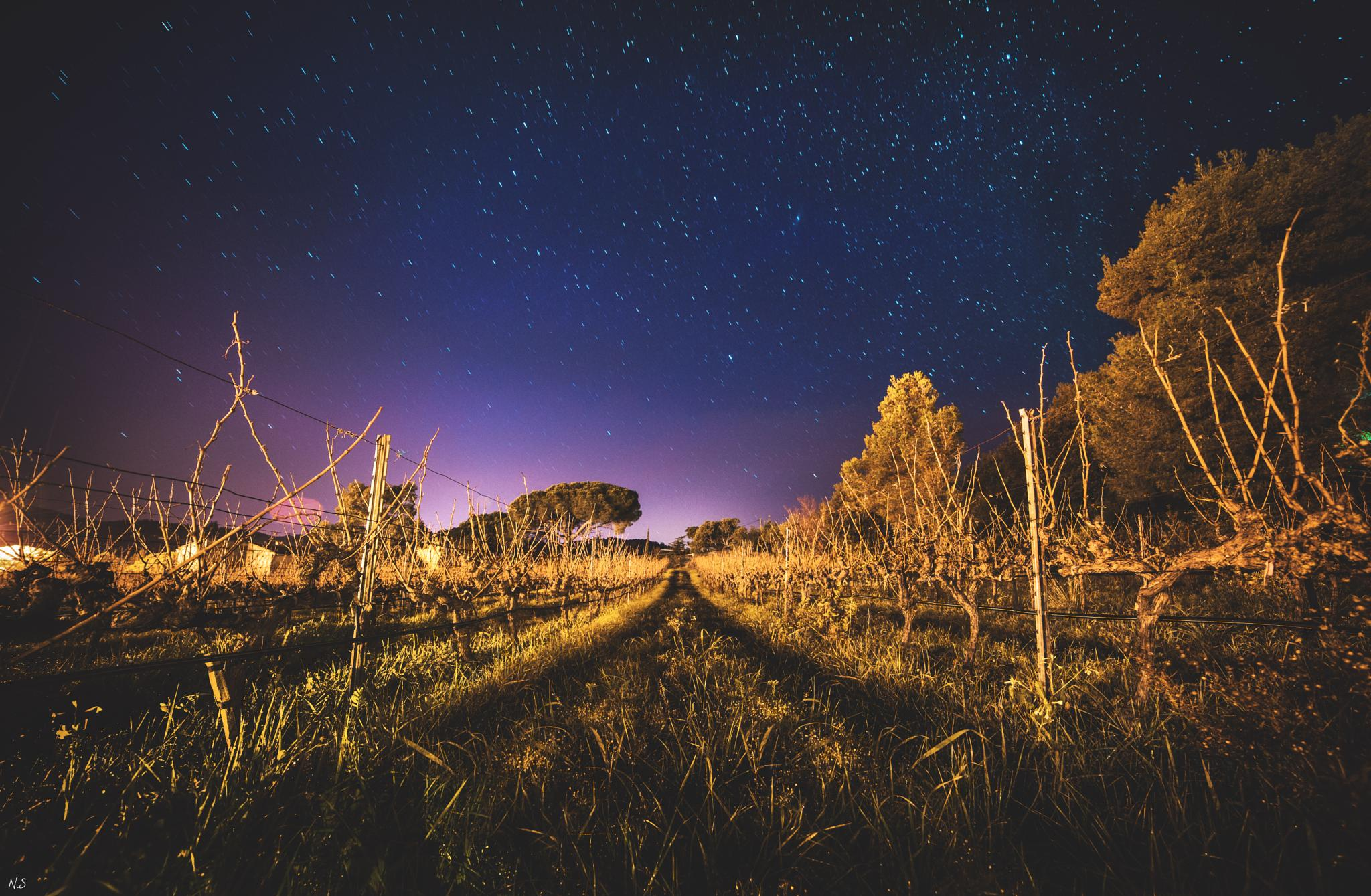 One way by Nicolas Scagliarino