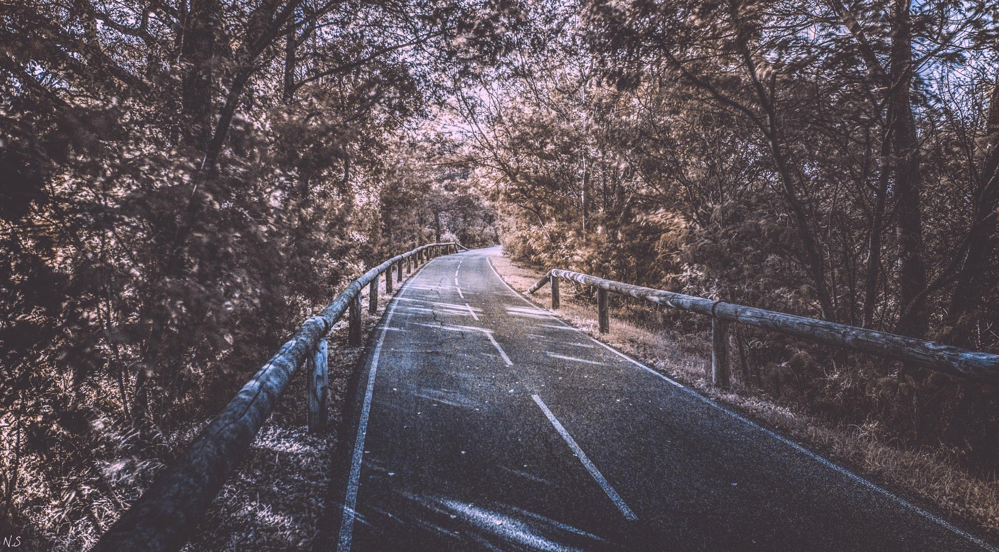 Infrared Way by Nicolas Scagliarino