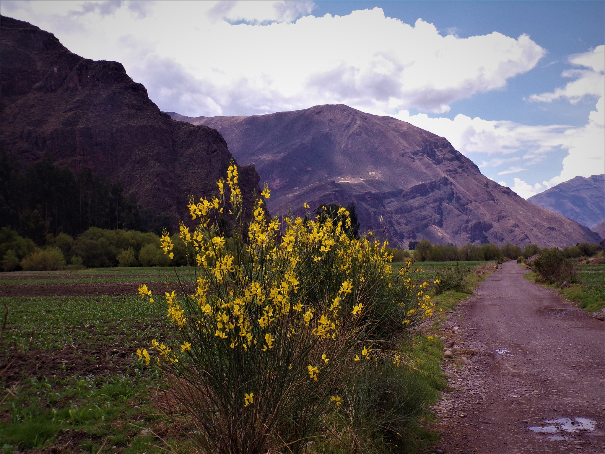 sacred valley by NiceOne