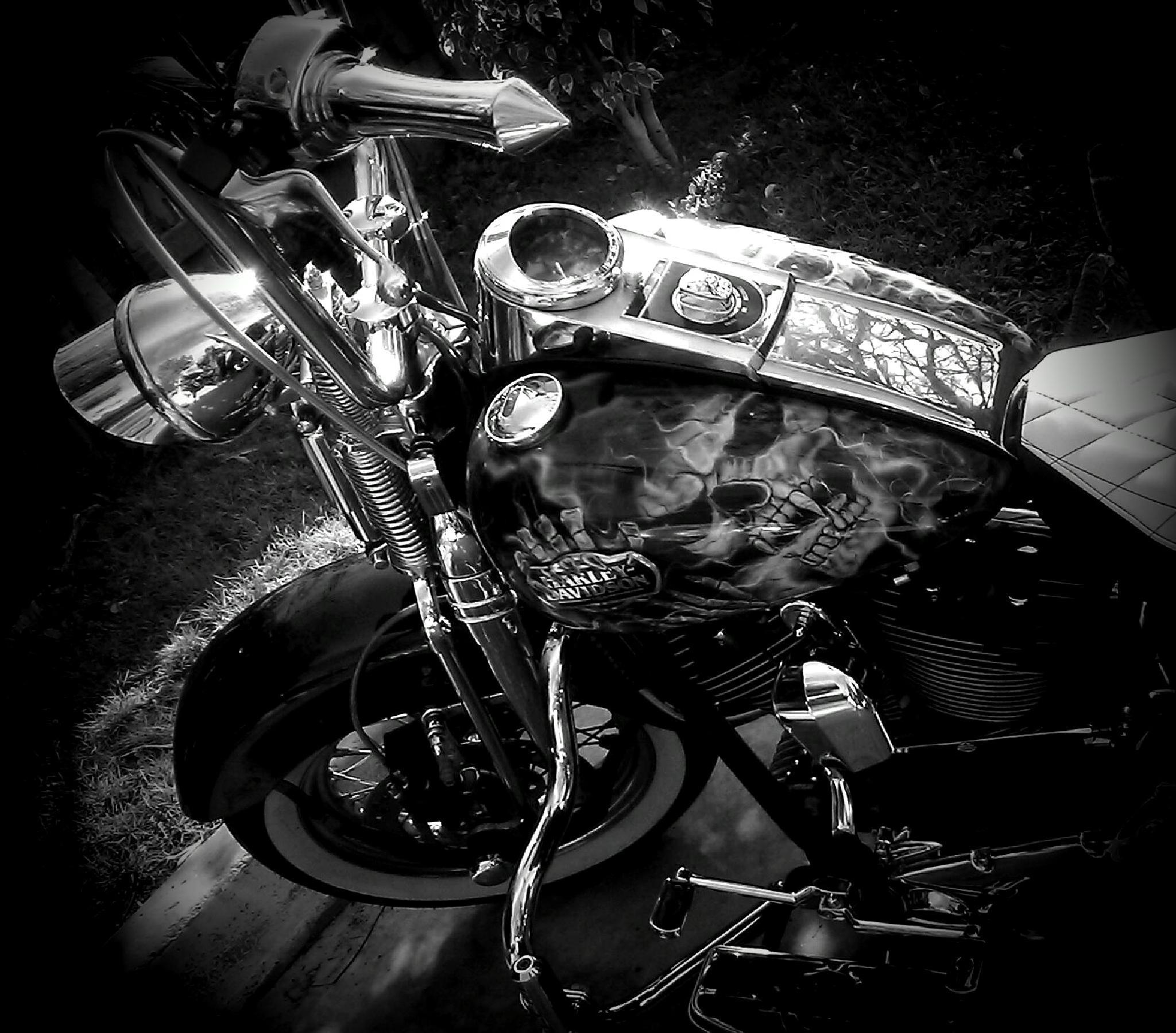 Phantom Ride Side 2 by rhonda.j.lewis
