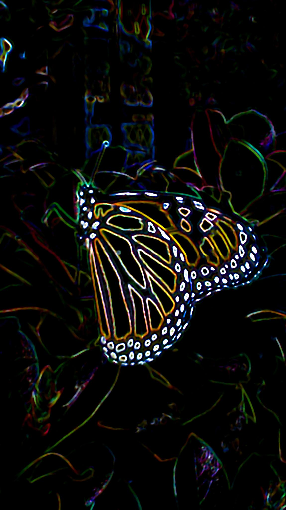 Photo in Animal #abstract #art #color #electric #butterflies #monarch #monarch butterflies #animals #insects #nature