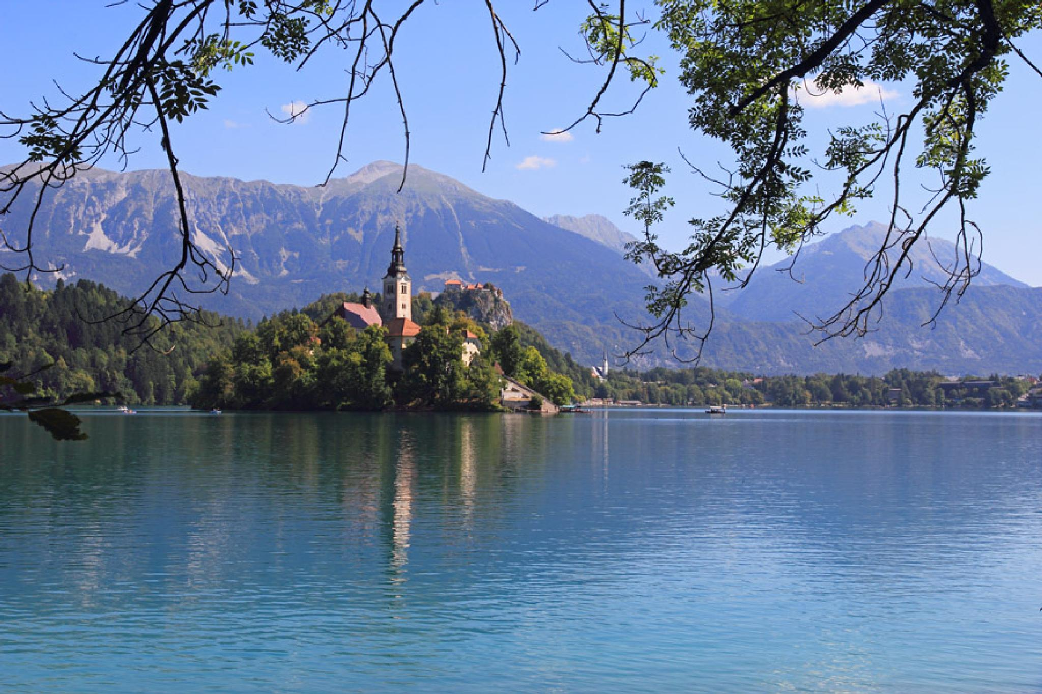 Lake Bled by Nikolay Tatarchuk
