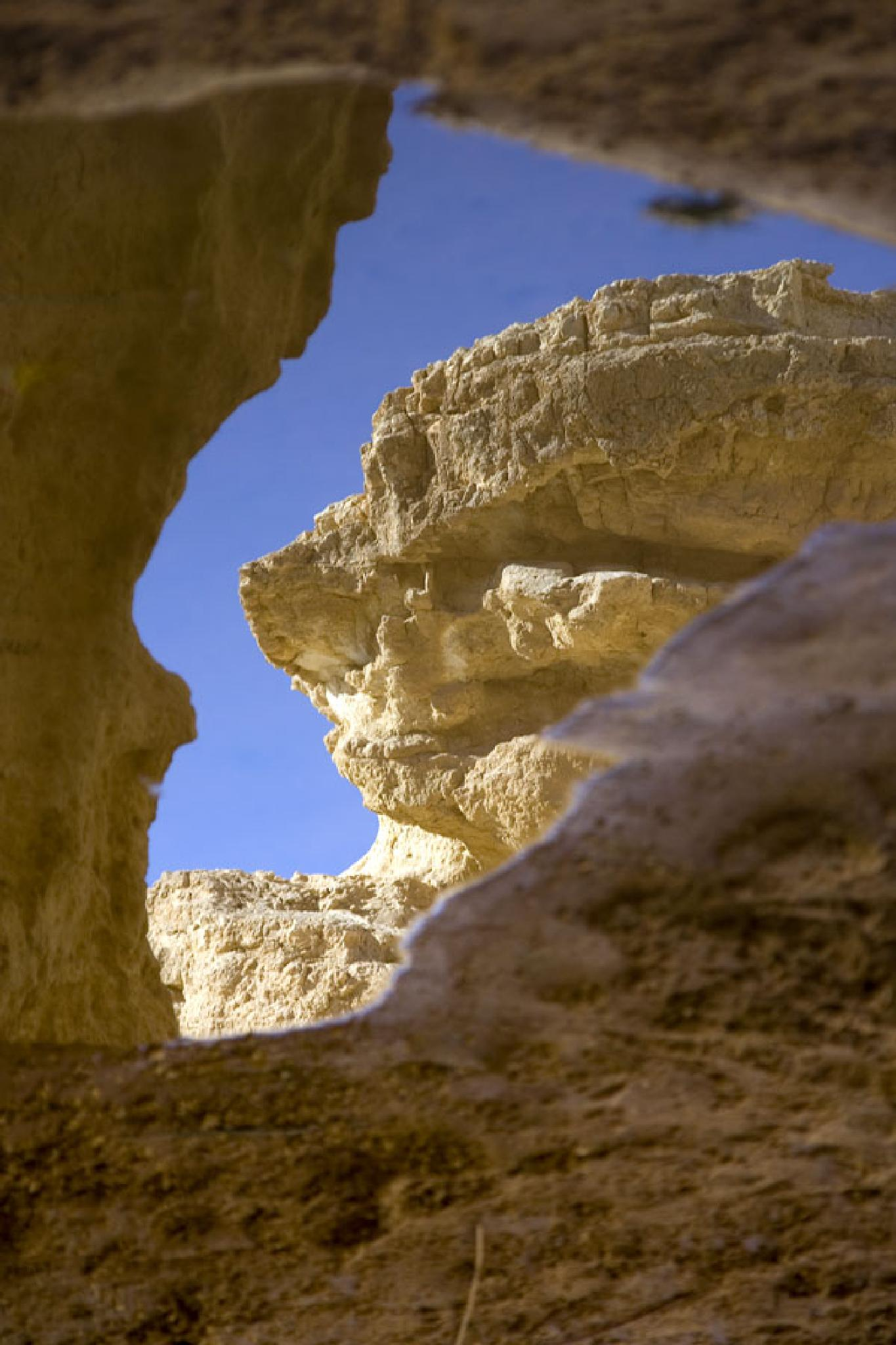 desert views by Nikolay Tatarchuk