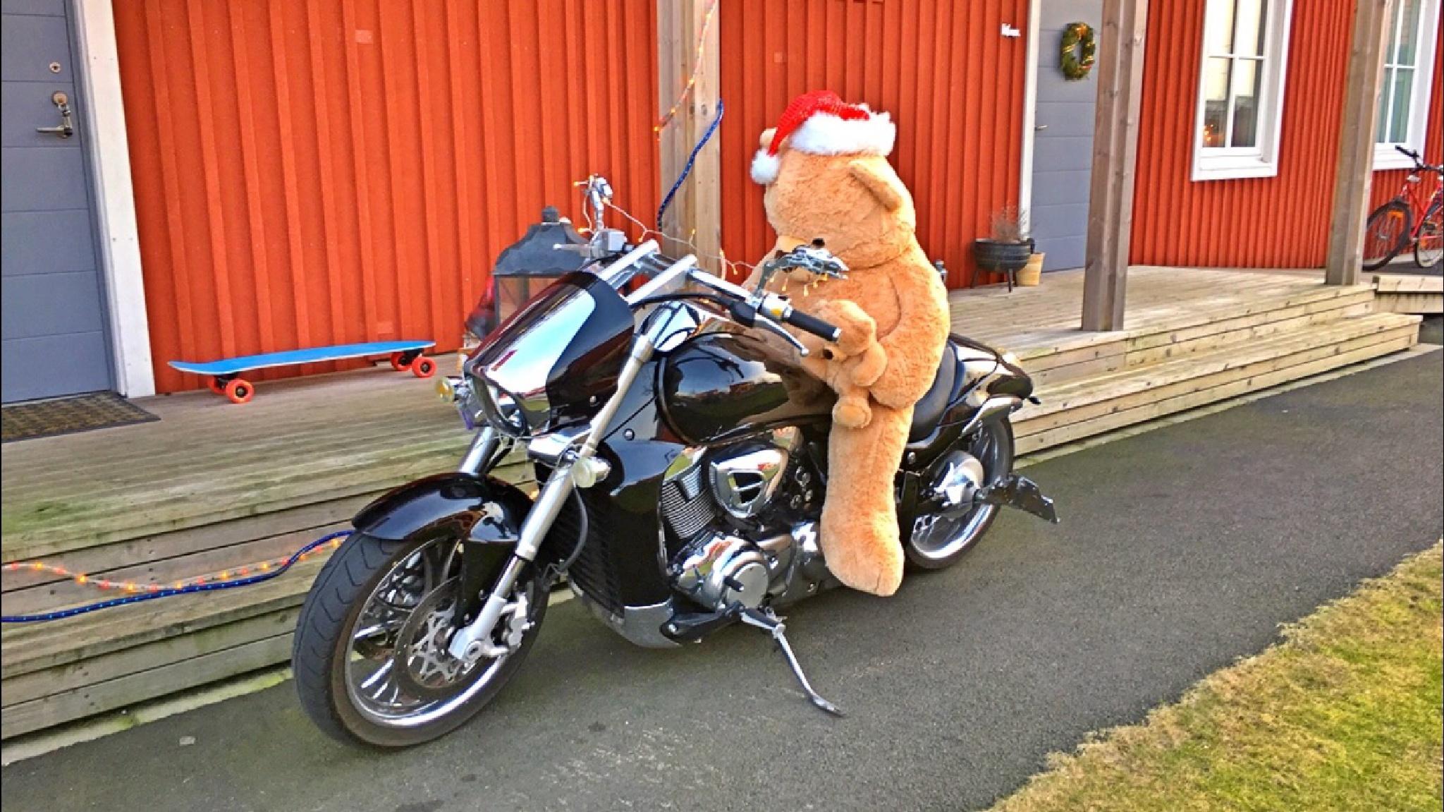 Teddy Santa by Johan Meding