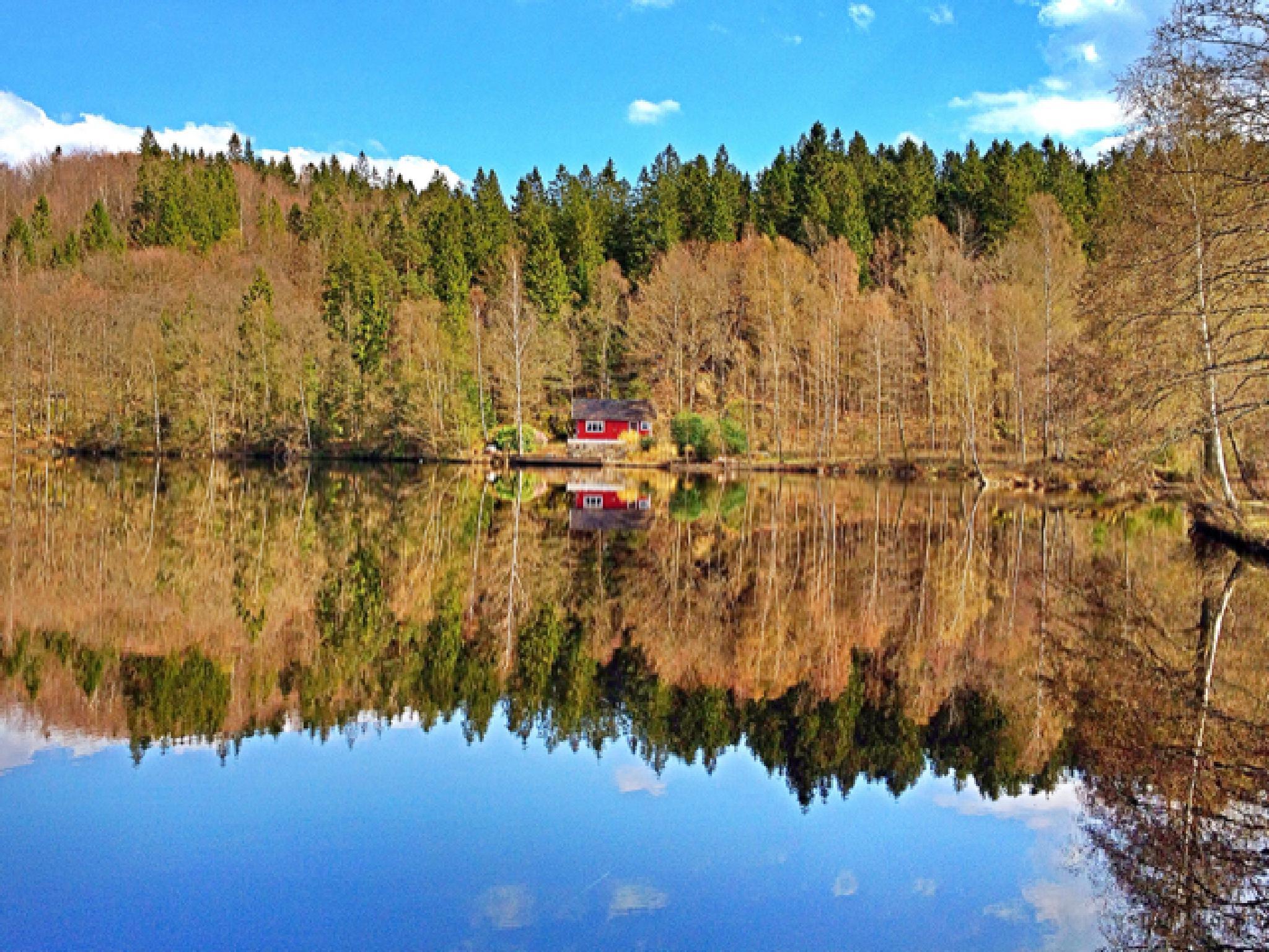 Halland Sweden by Johan Meding