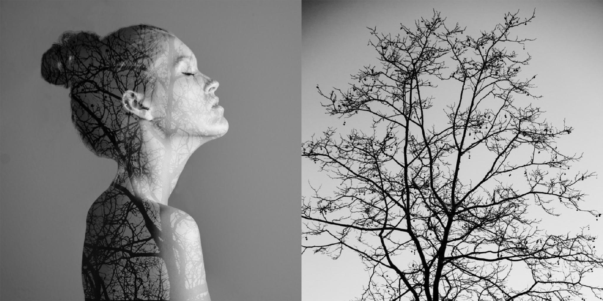 lost in nature by Anne Zwart
