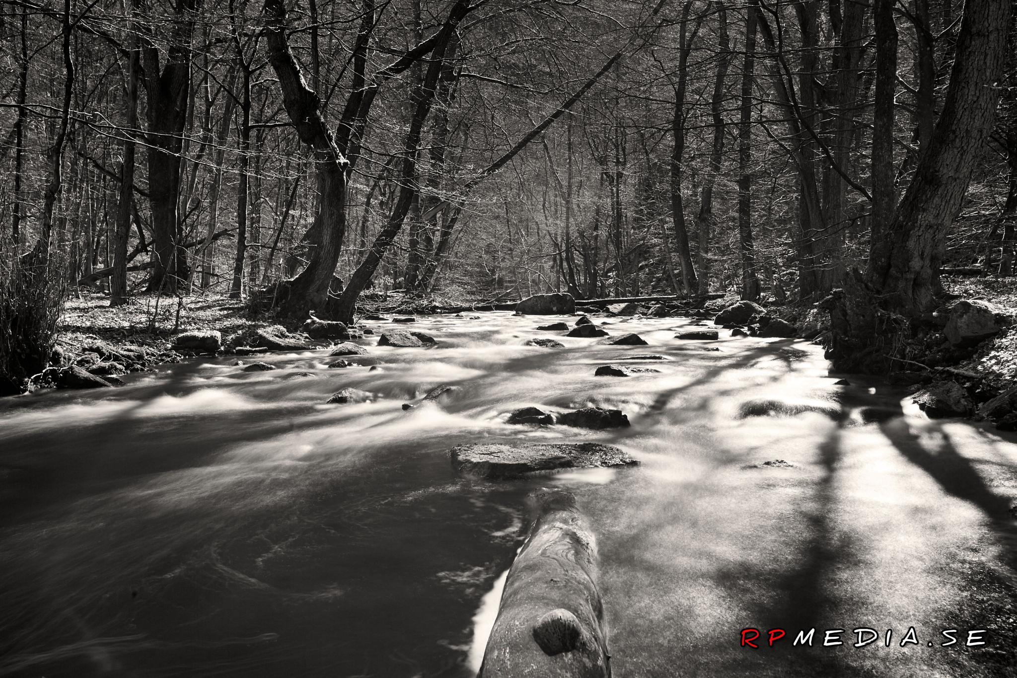 river black and white by espresso.rickard
