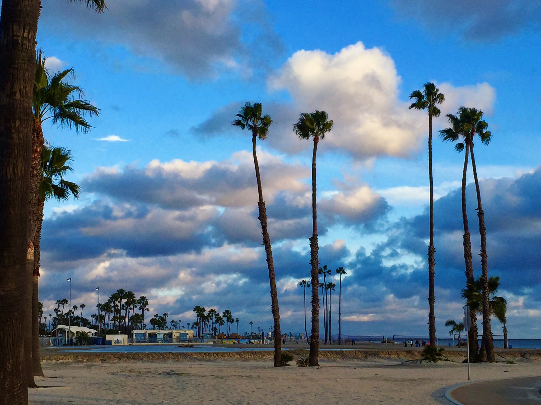 Clouds and palmtrees by maryann.mishko