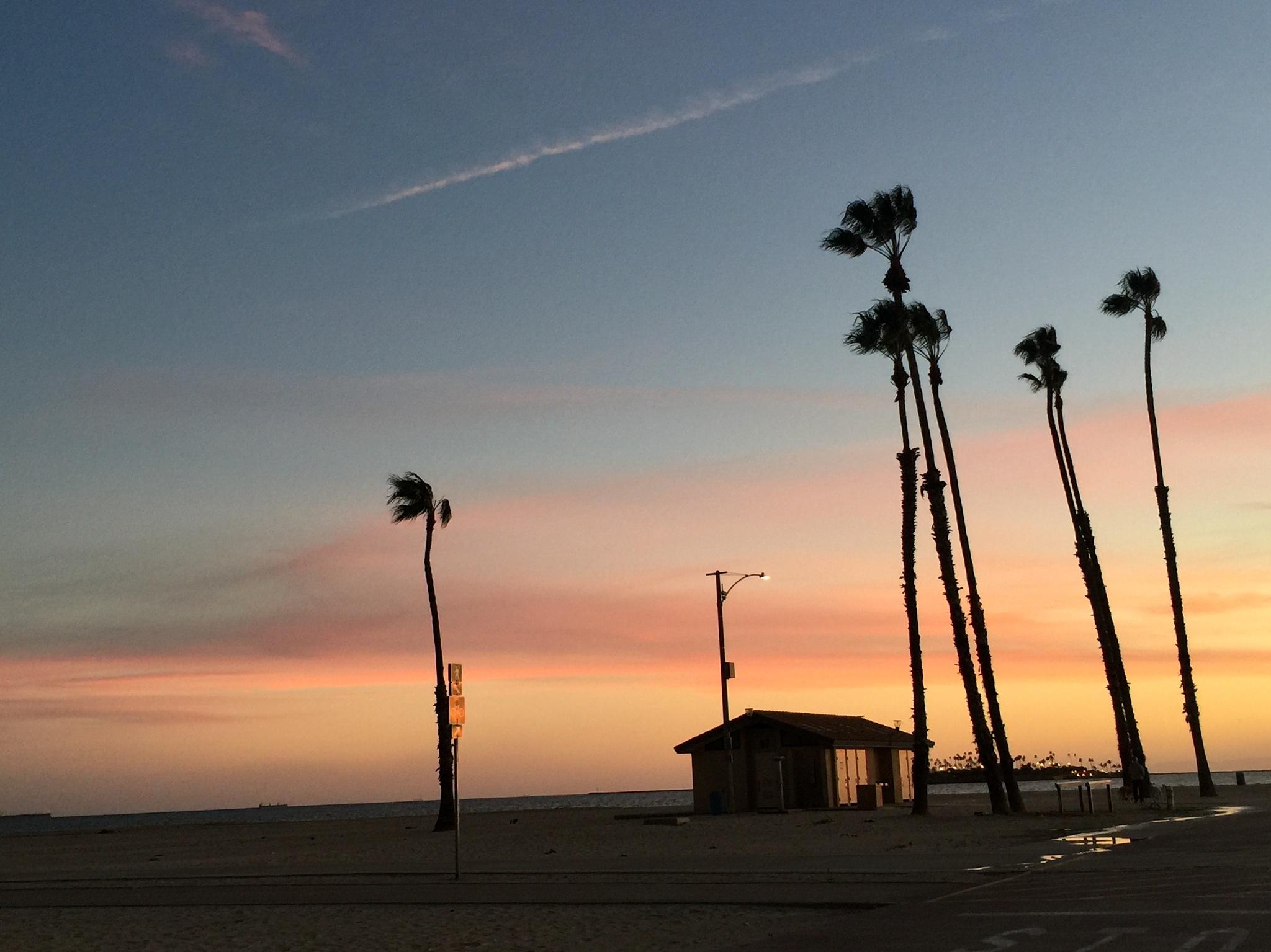 Photo in Random #beachlife #colors #sunsets