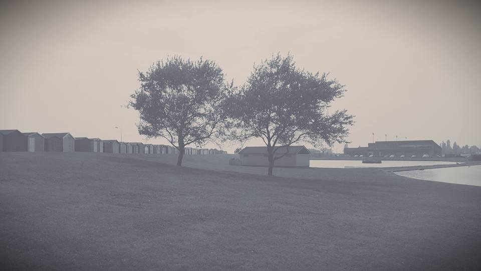 Two Trees by sweetybabe72