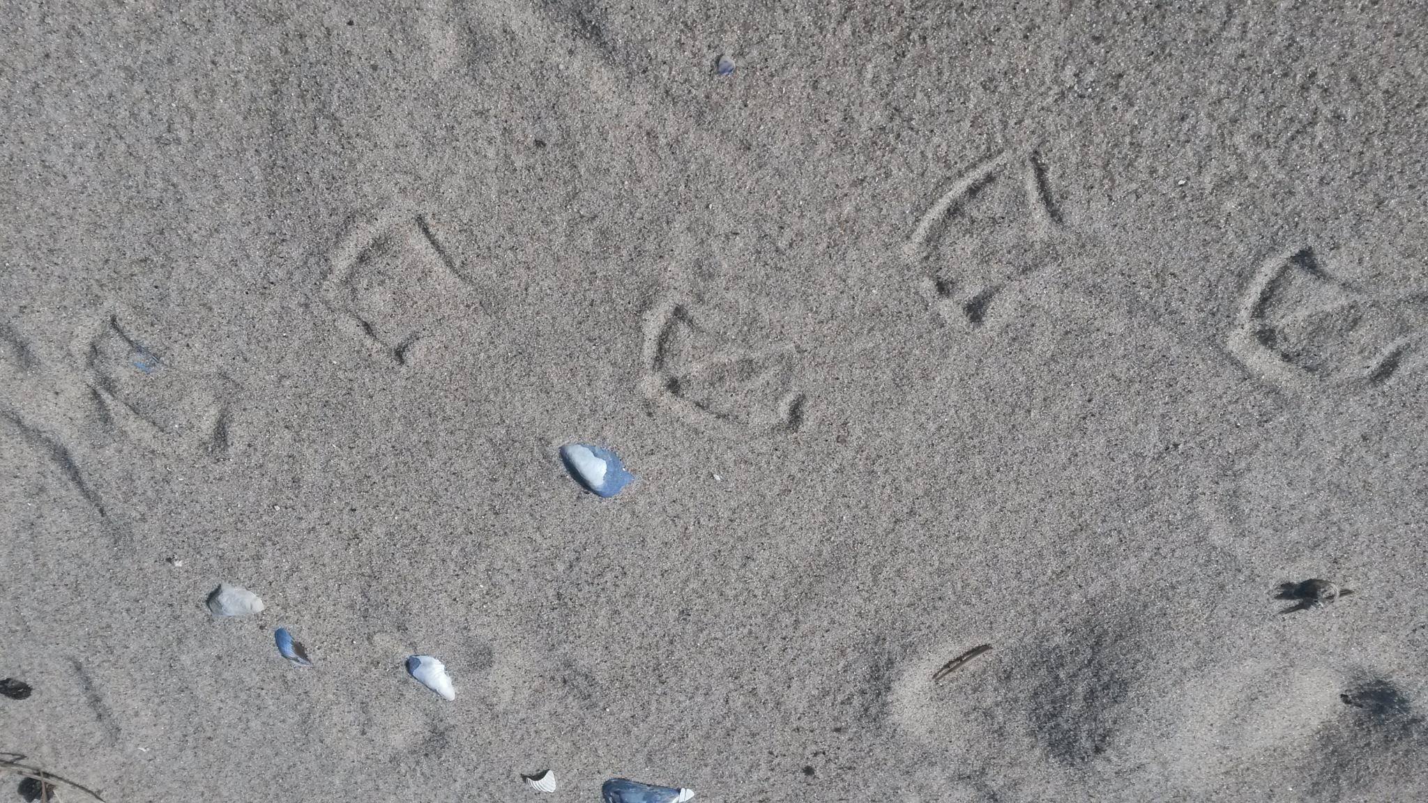 Footprints by anja87