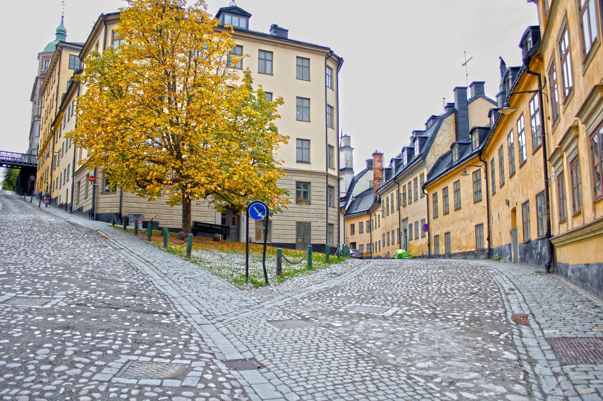 Södermalm by AvieW