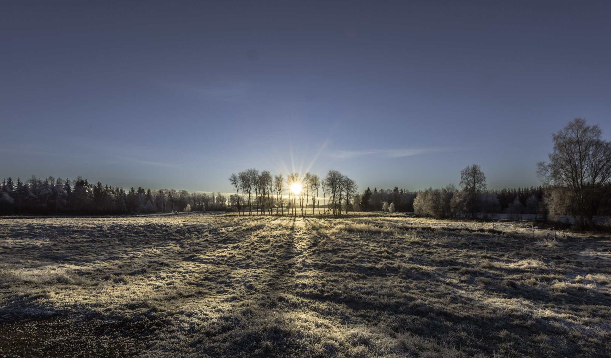 A frosty morning by kapten.sjoskum