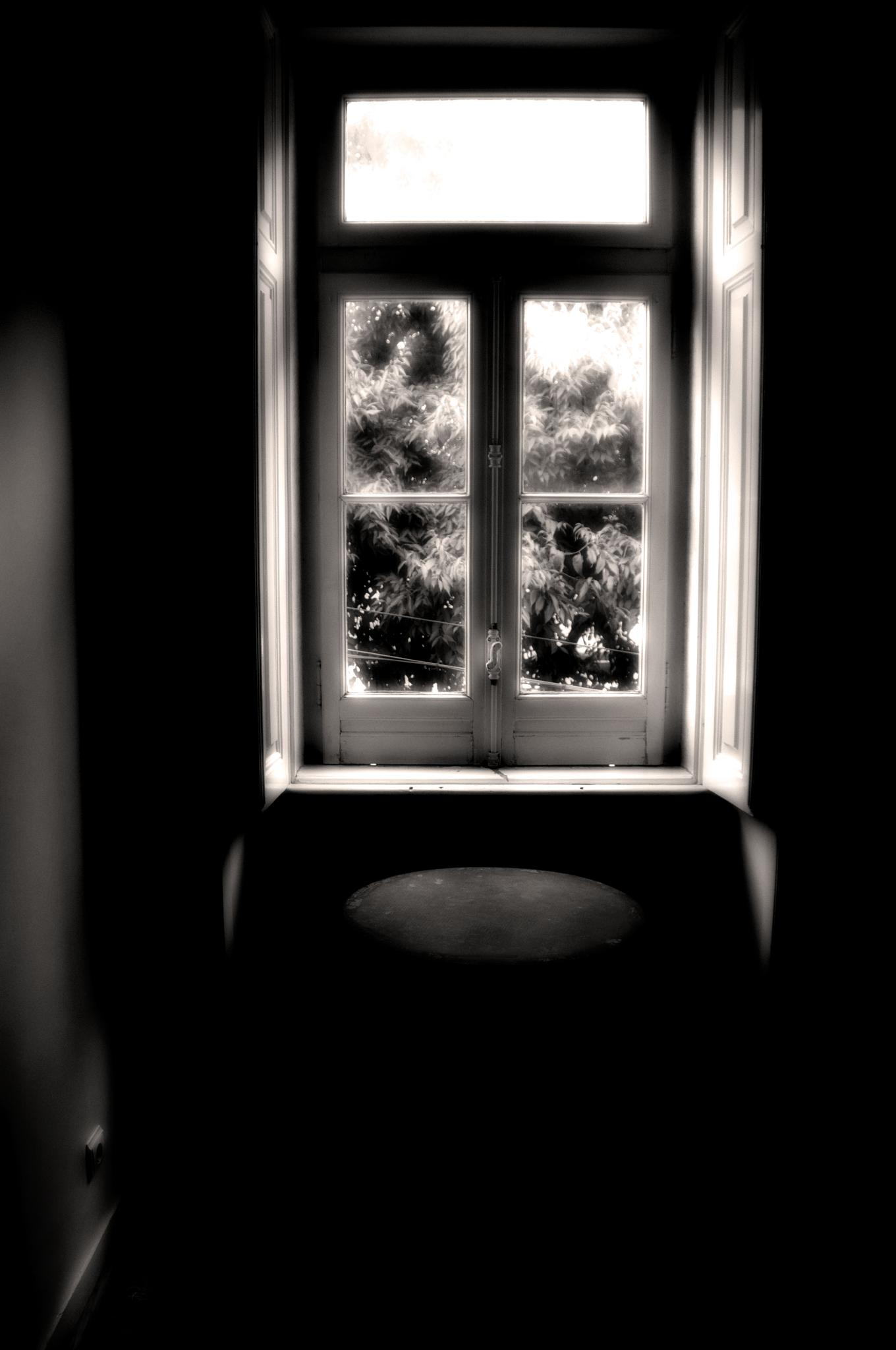 Behind the windows by FUMIGRAPHIK
