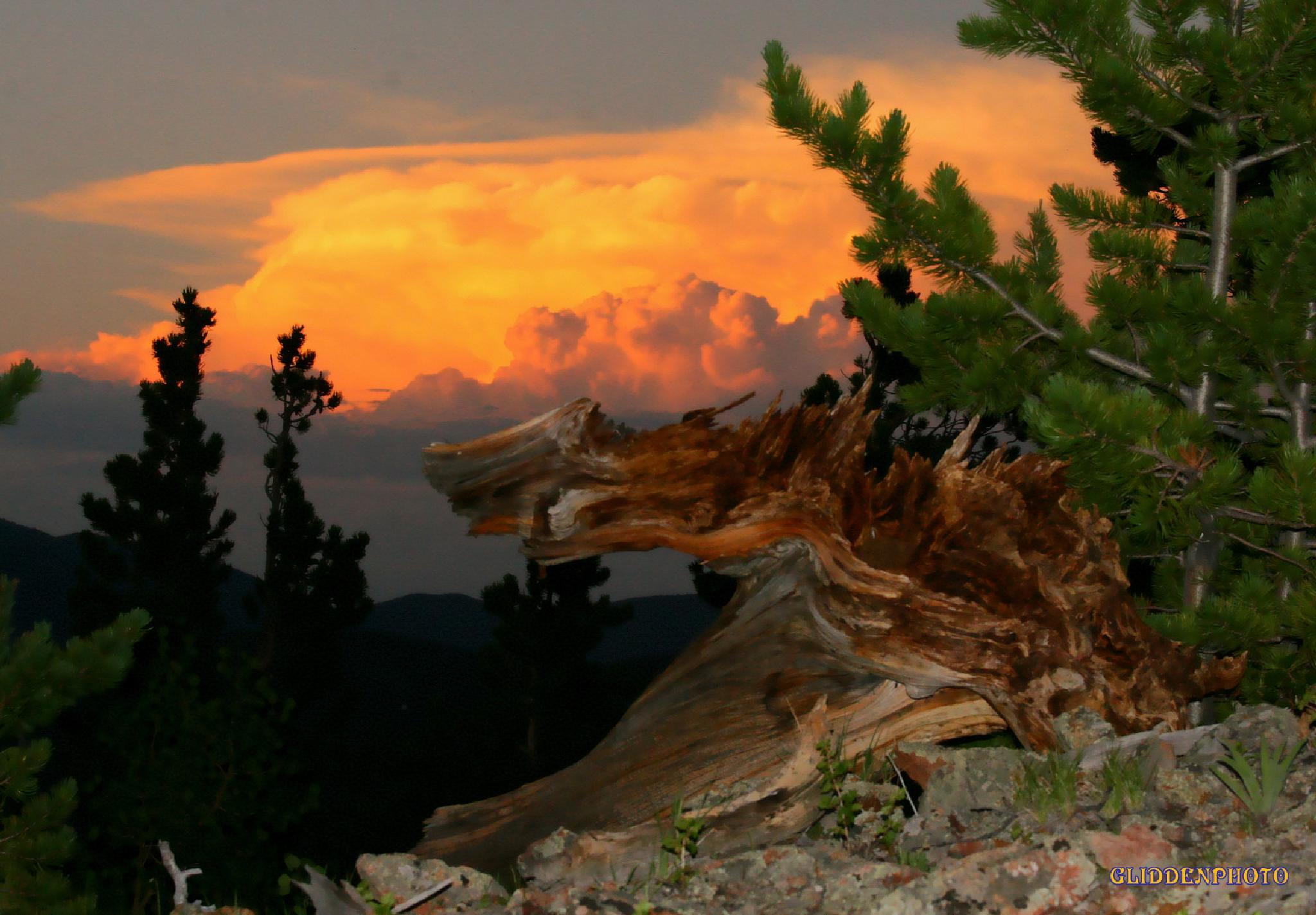 A mountain Sunset by Douglas Glidden