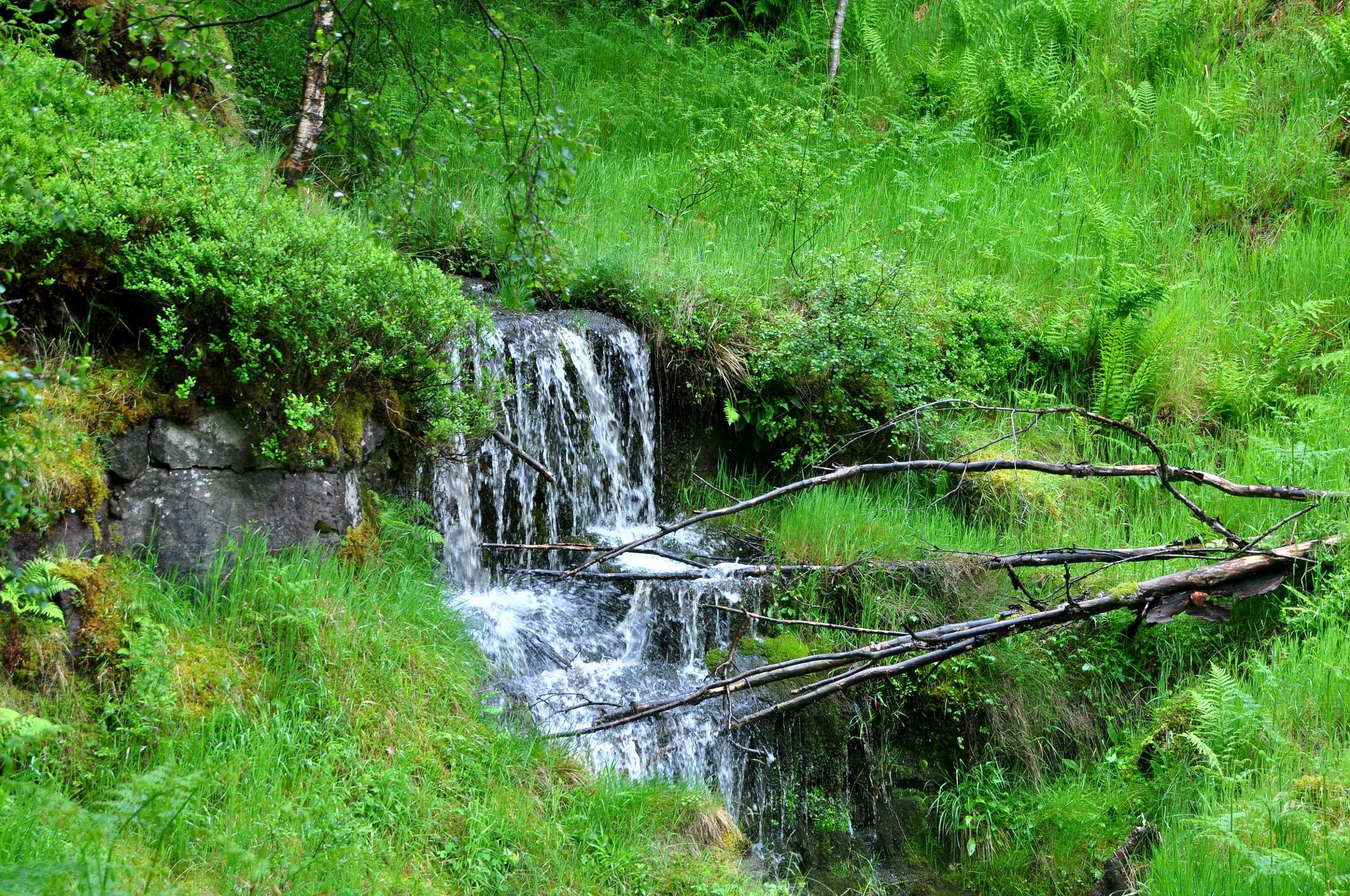 strem at Loch Venachar. by peter.graham.31