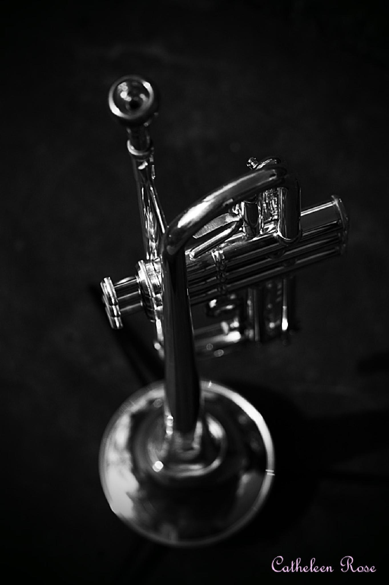 Trumpet by Catheleen Rose