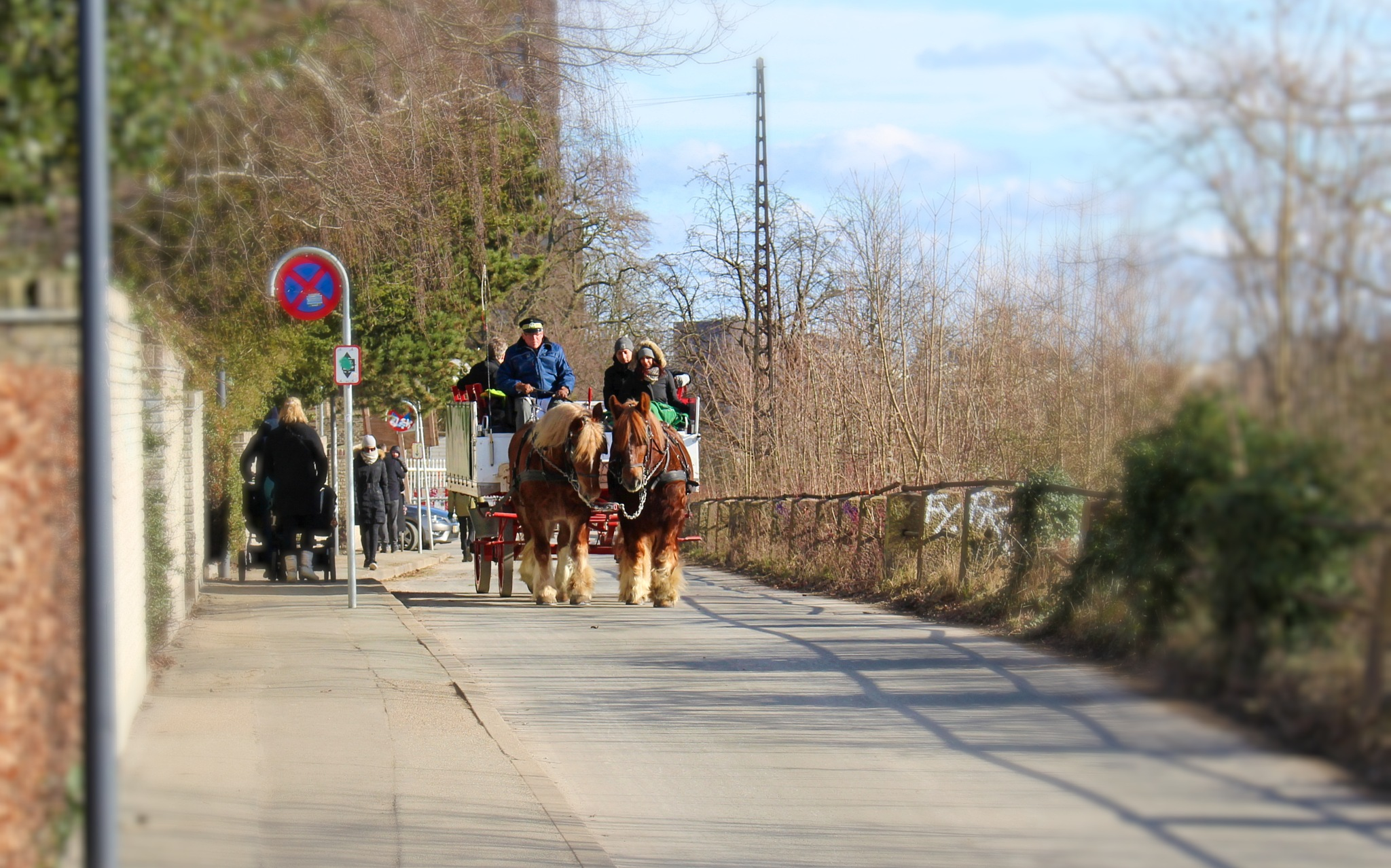The Carlsberg brewery horses by Stig Norre Rasmussen