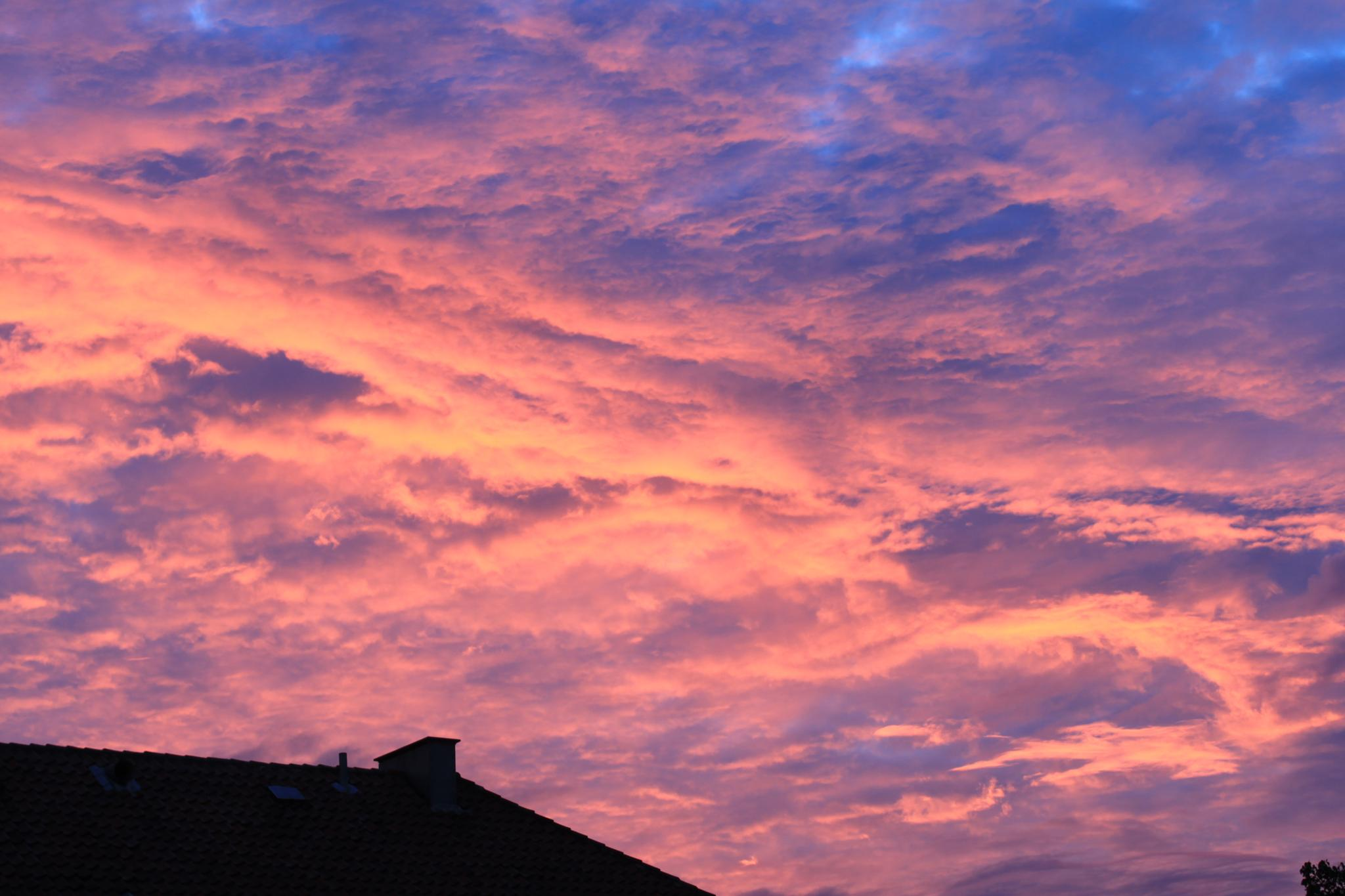 Sky on fire above Copenhagen by Stig Norre Rasmussen