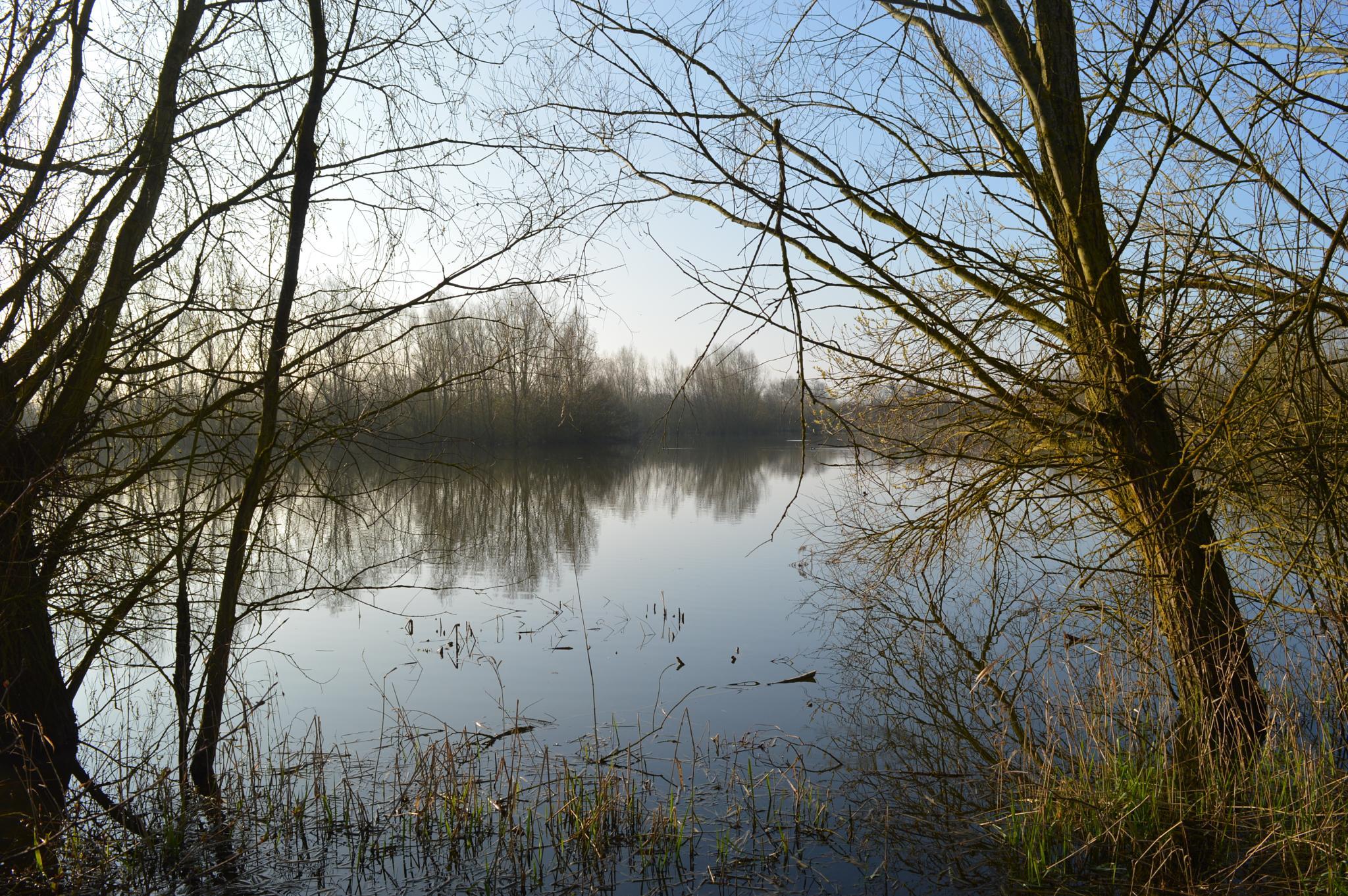 Summer Leys Nature Reserve by JaneFenner