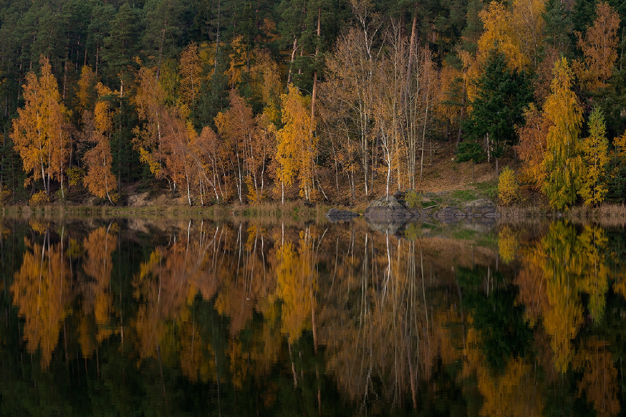 Autumn At The Lake by Juergen Mayer
