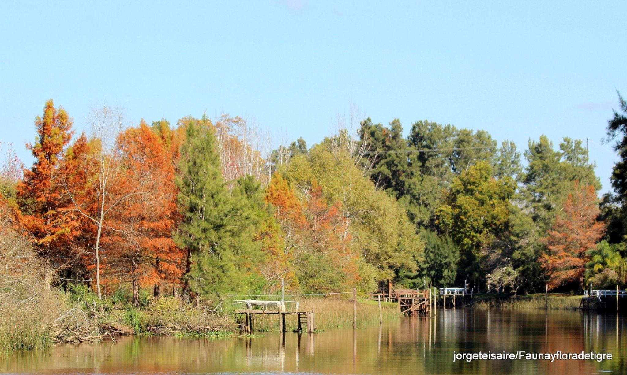Aguas tranquilas en un dia de otoño by jorgeteisaire