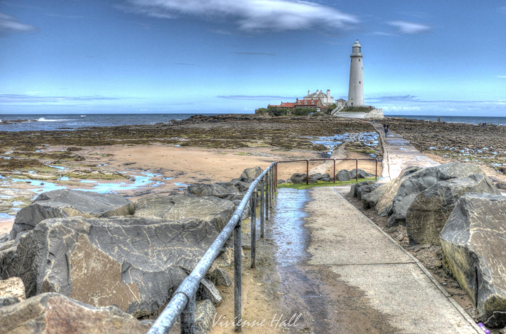 Lighthouse Path by vivienne.hall.16