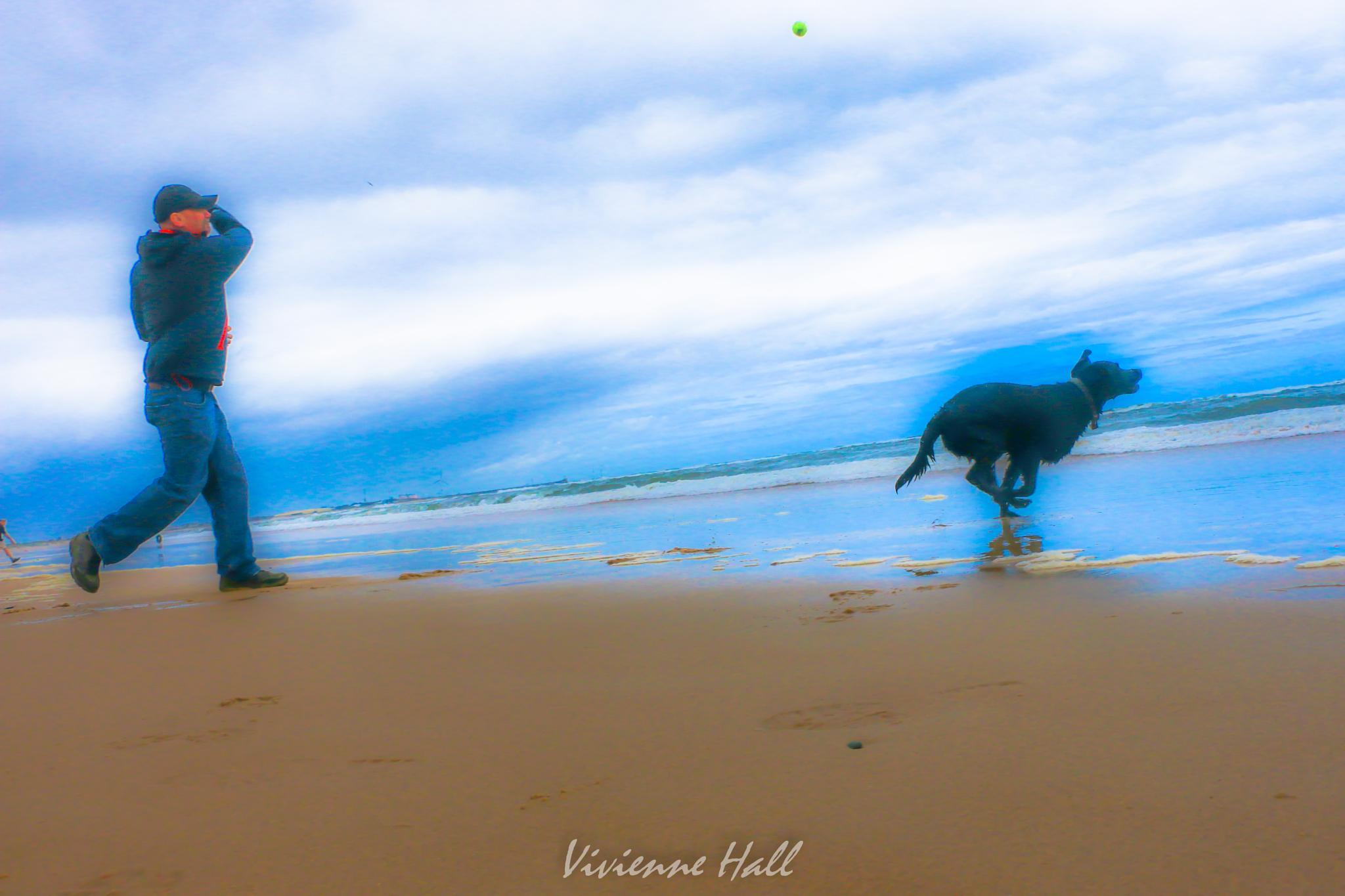Fetch! by vivienne.hall.16