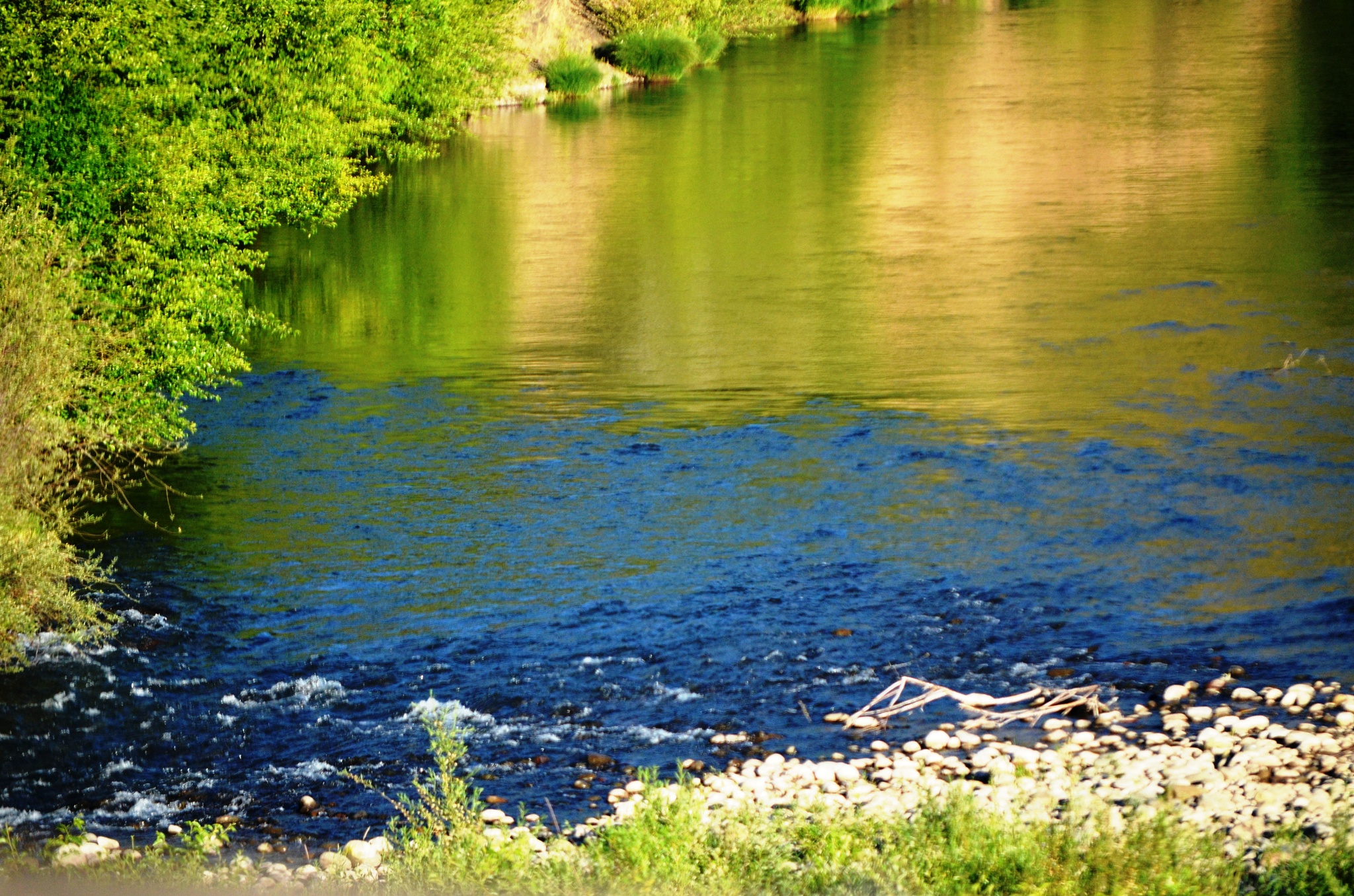 Photo in Landscape #rivers #colors #currents