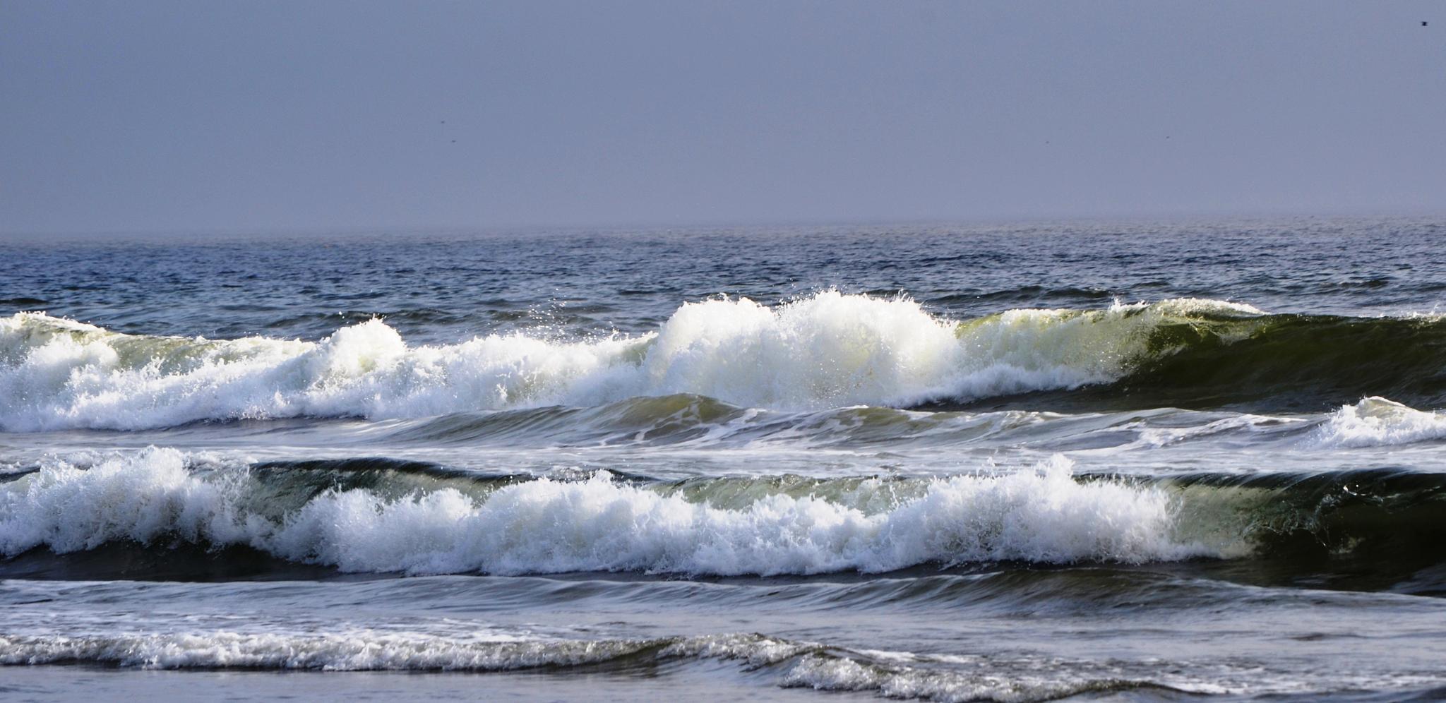 Surf by AdaMariePhotography