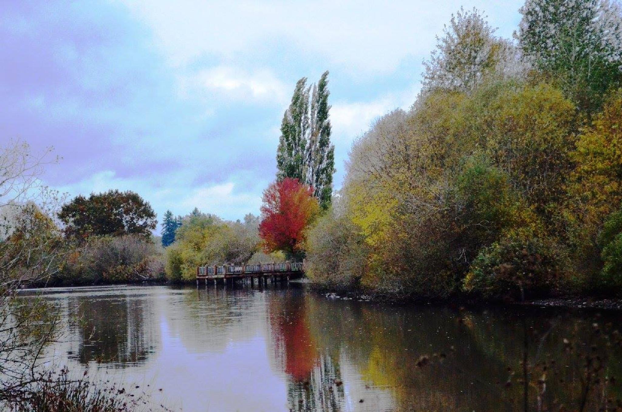 Autumn Oasis by AdaMariePhotography