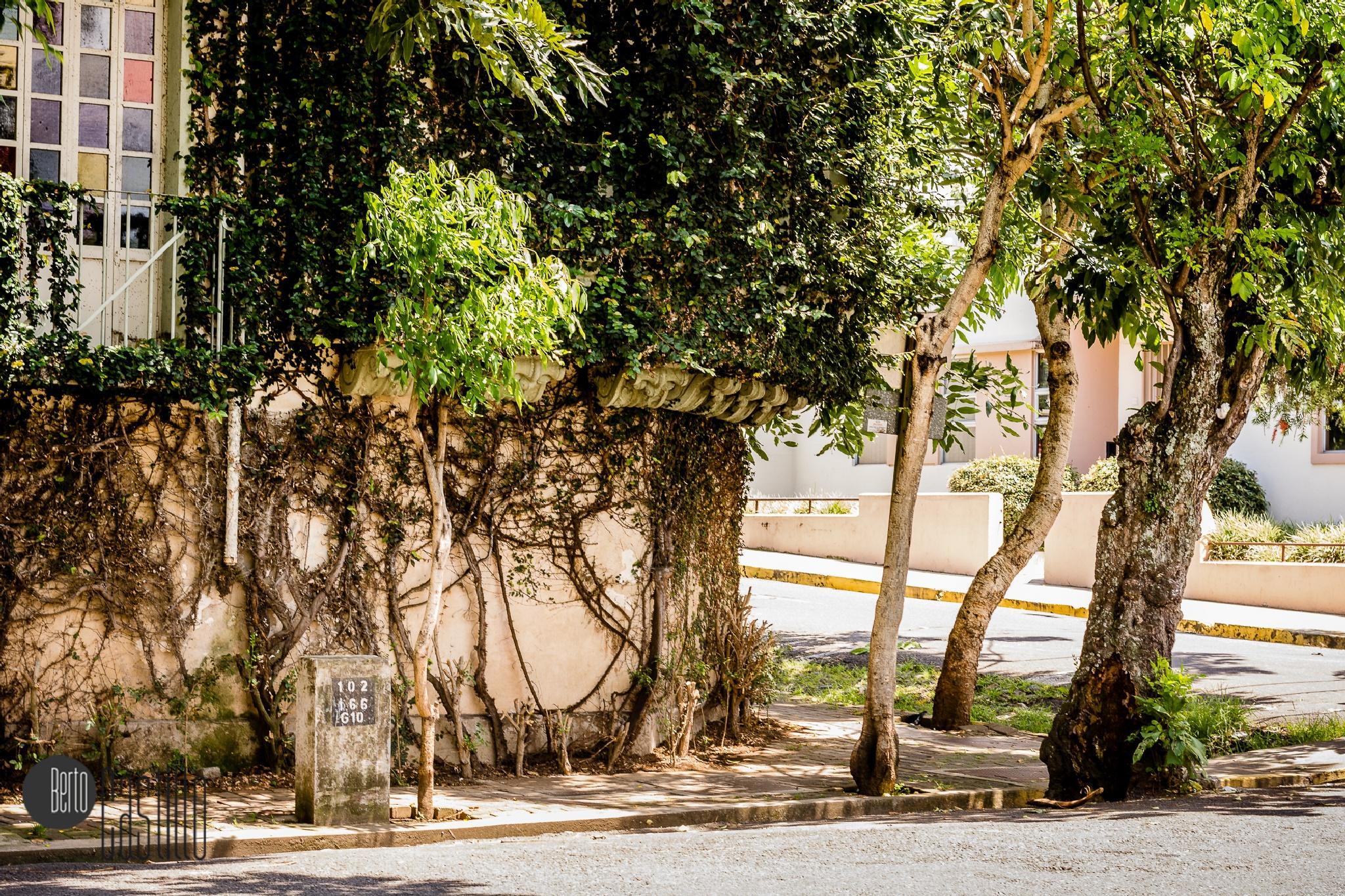 Corner at Barrio Amón by Odir Alberto Castillo