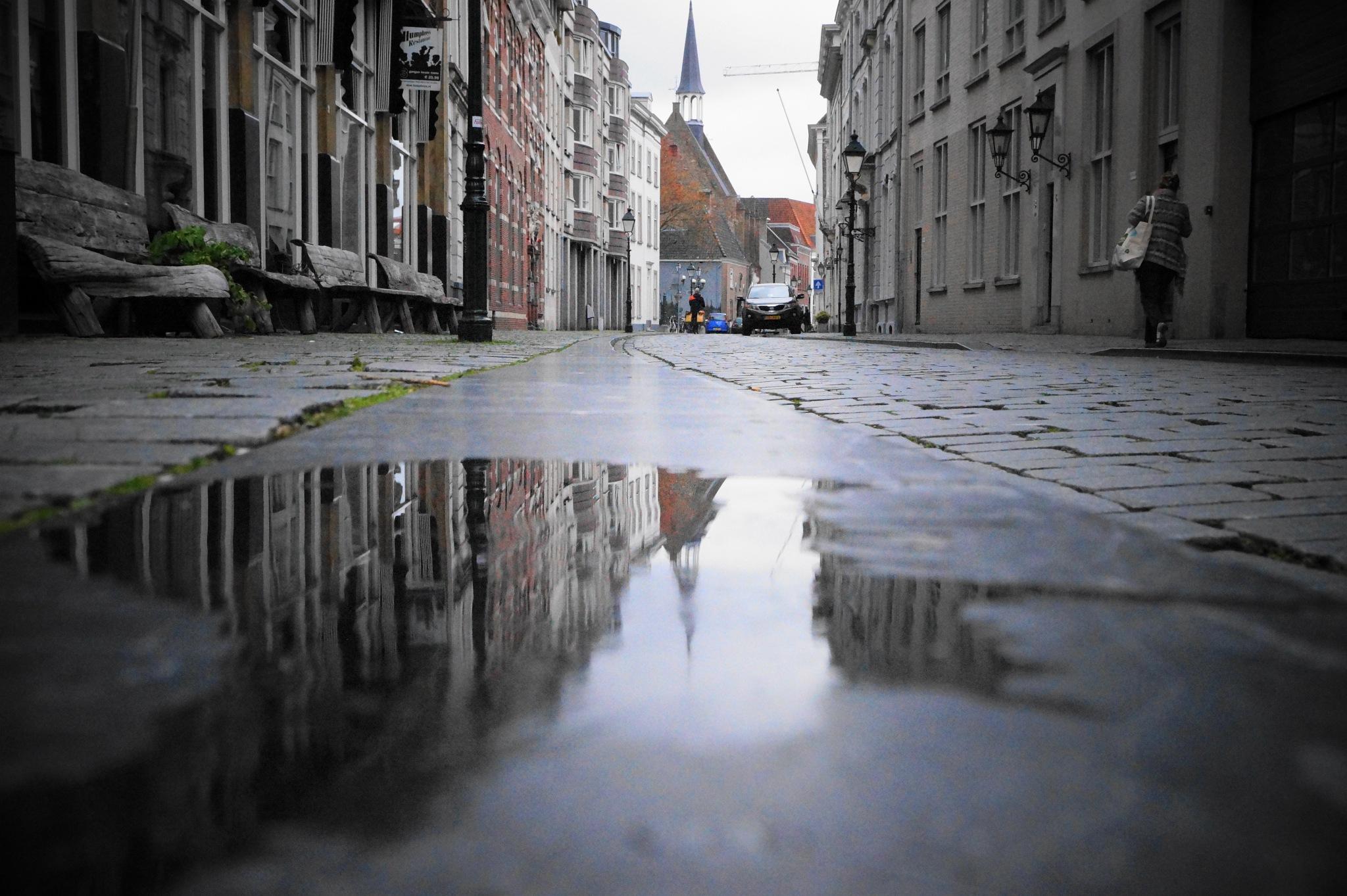 Reflection by yankeebiscuitfan