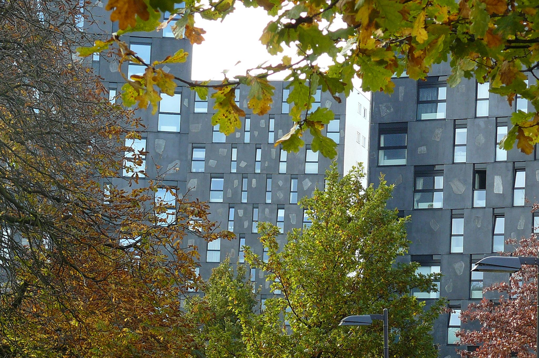 Modern architecture in Breda by yankeebiscuitfan