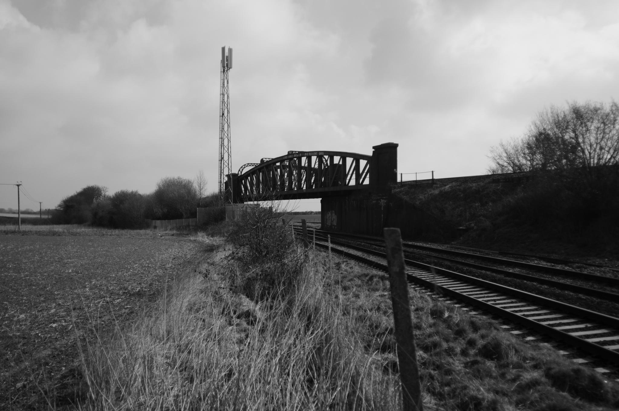 Black and White Bridge by pstreeter