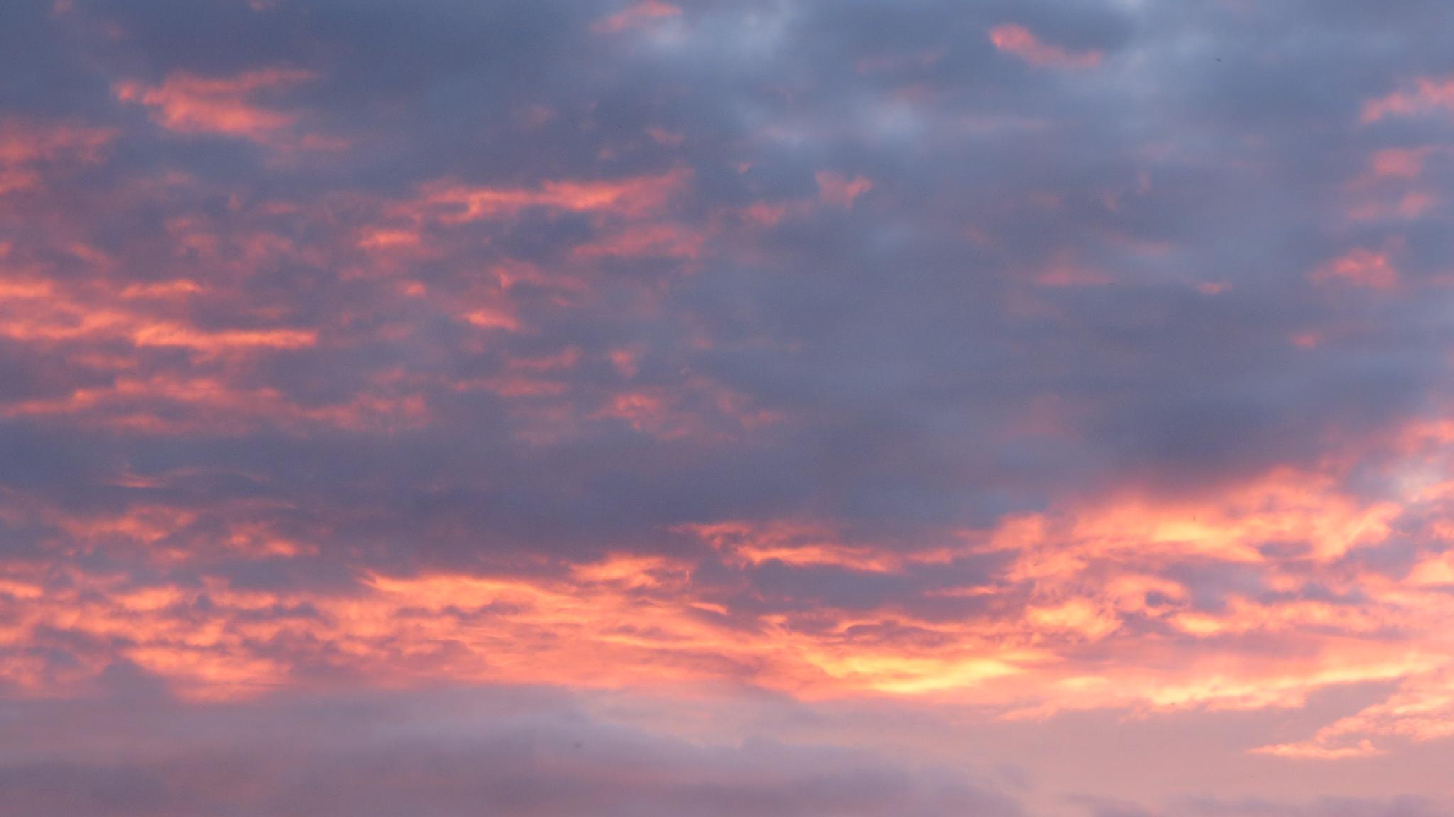 Fire in the sky by Davie Butler