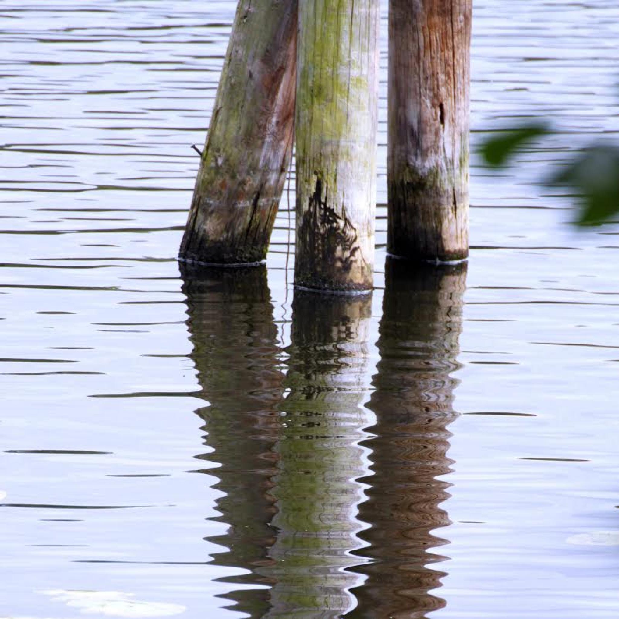 reflection by fotofredrica