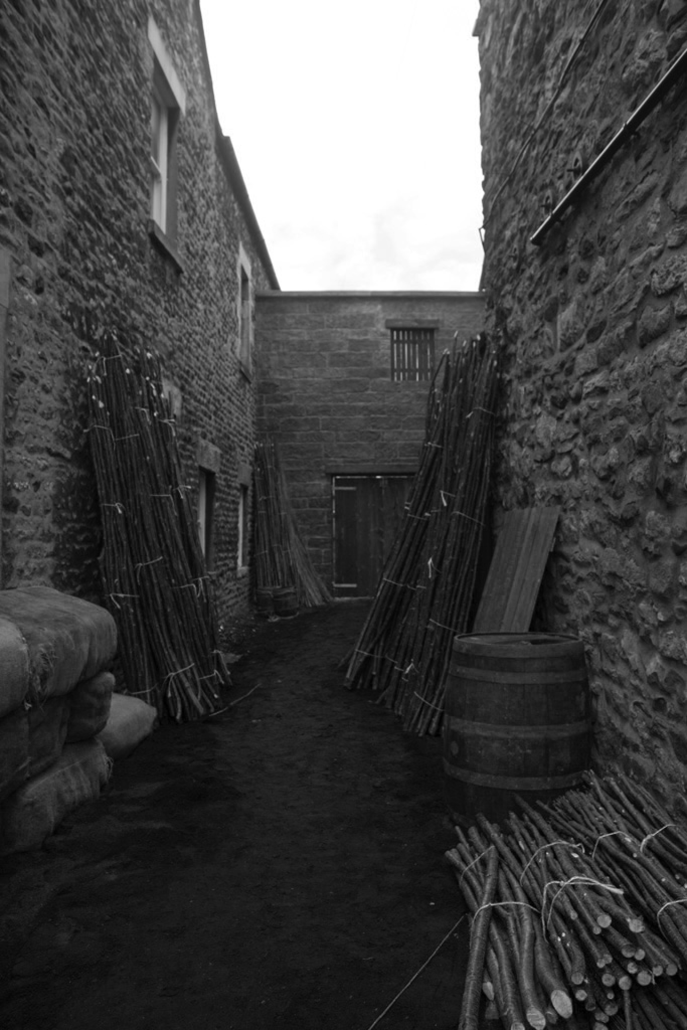 Alley by ScooEroticArt