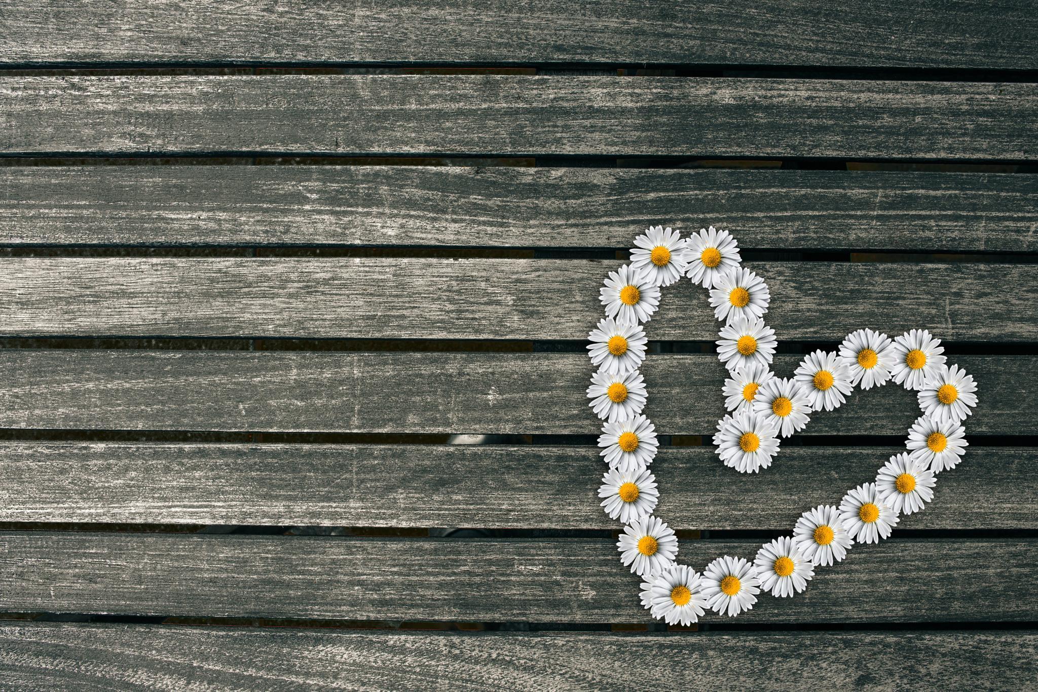 Flower heart by Kasper Nymann