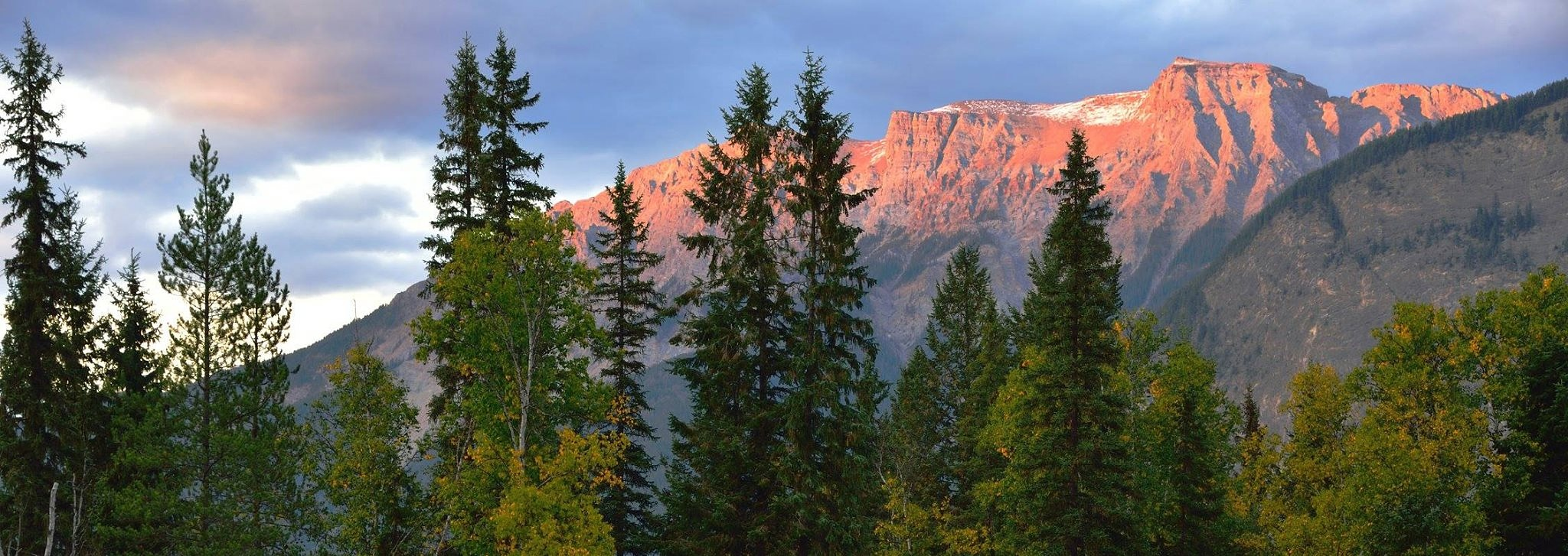 mountain top by michael.choppen