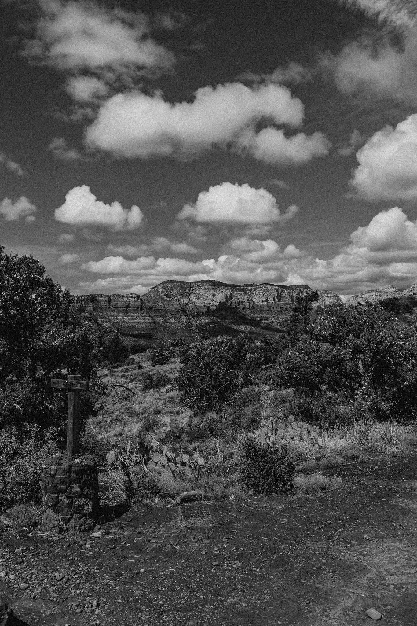 Desert Path by A.J.