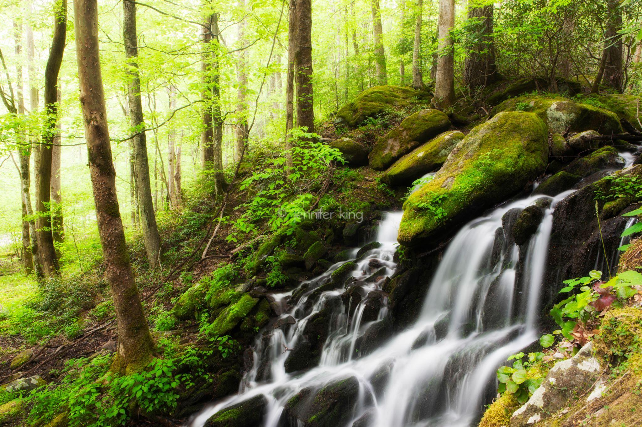 Spring Waterfall by jenniferkingphoto