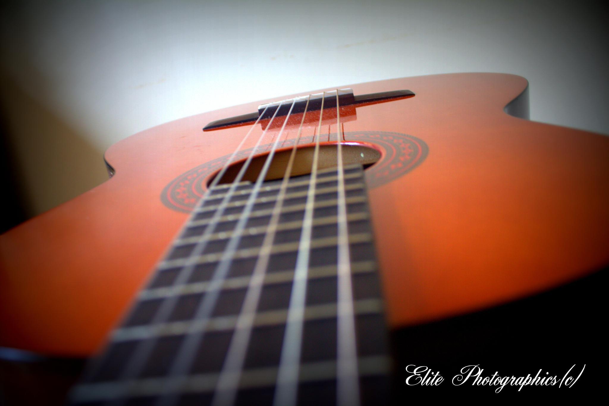 Guitars by LISA WEBB
