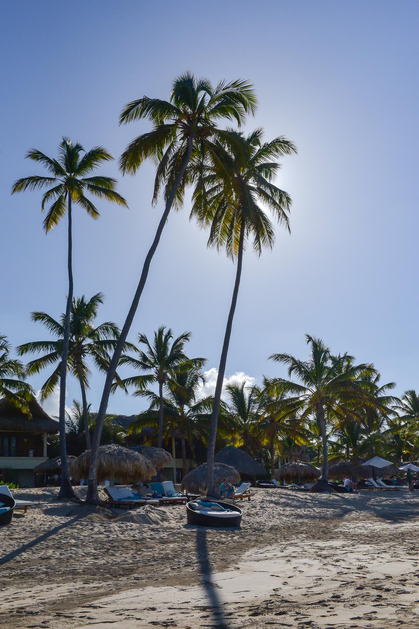 Beach Time at the Zoetry in Punta Cana, DR by Dennis  Geiser