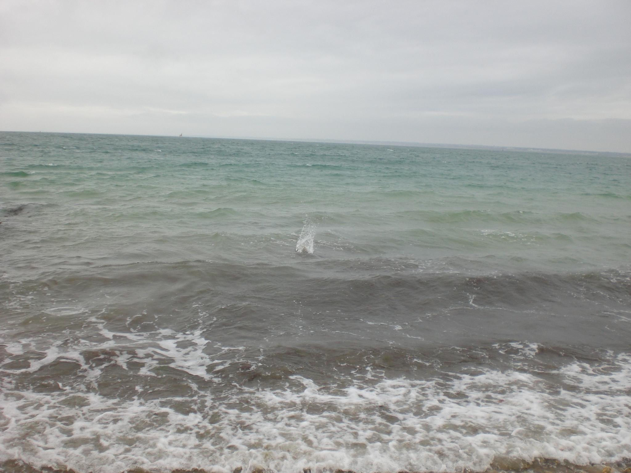 Just a splash in the sea by Jan.ohnokt