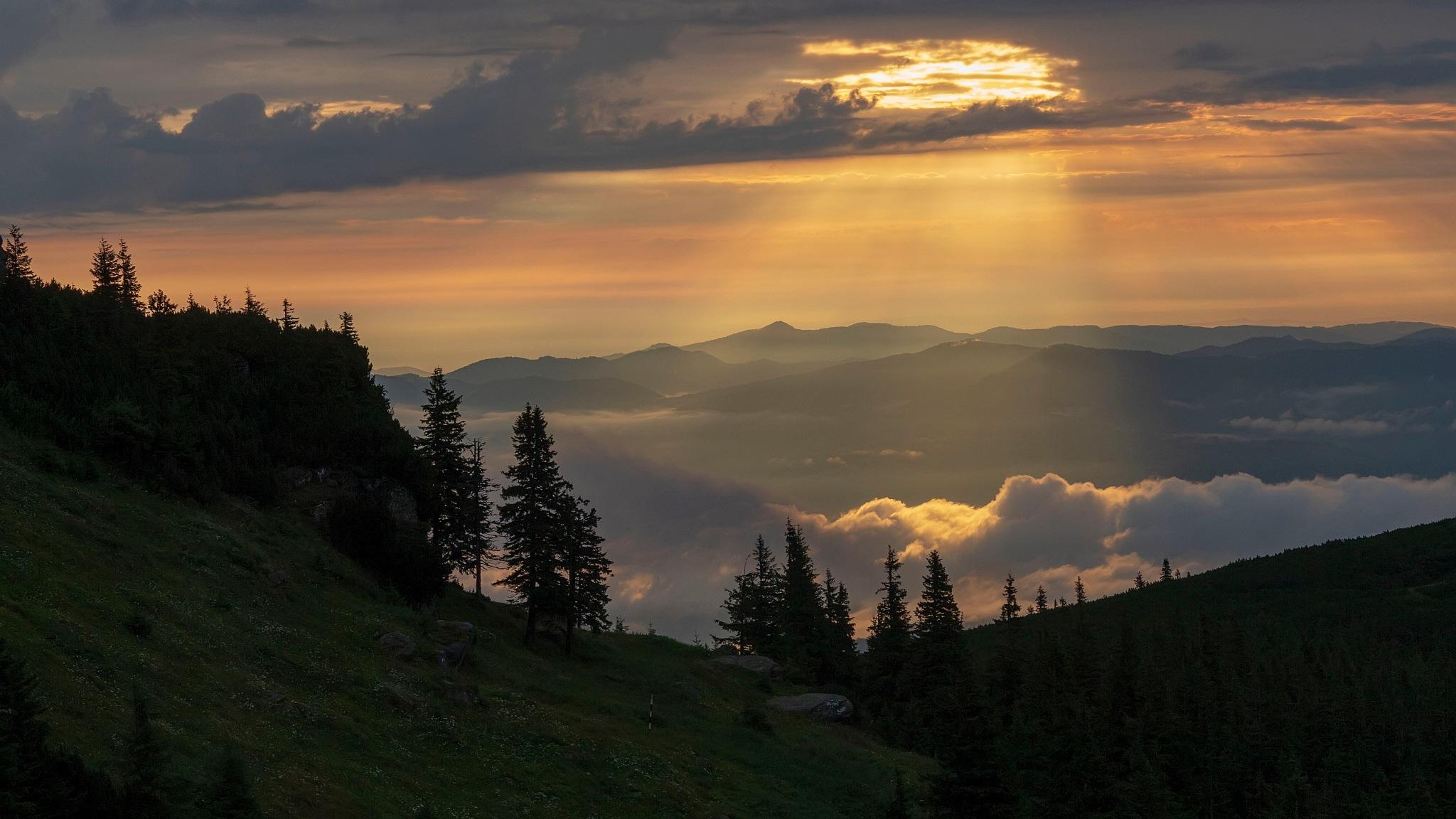 Morning light by cristian.negrus