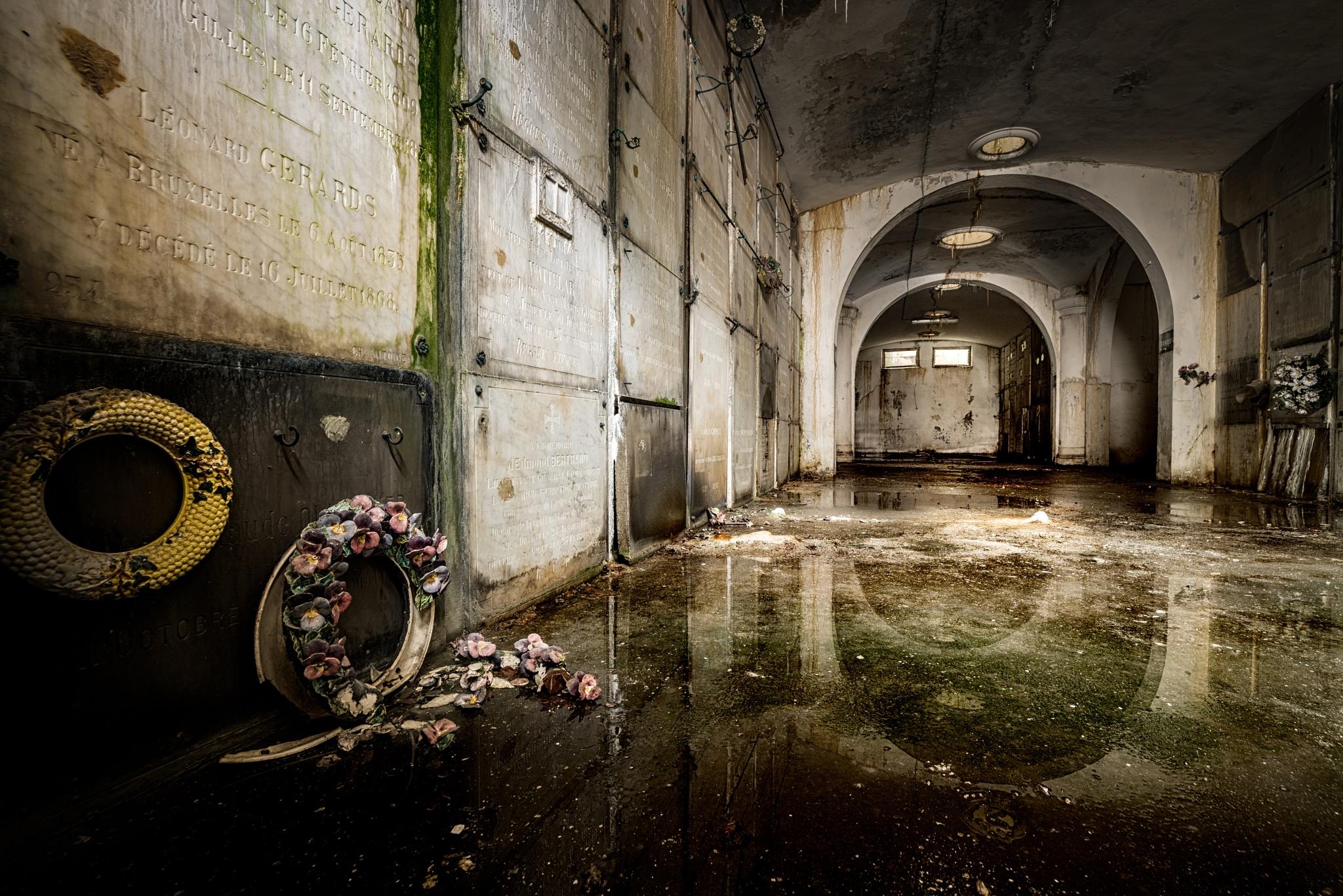 Photo in Urban #crypt #urbex #urban #exploration #decay #old #forgotten